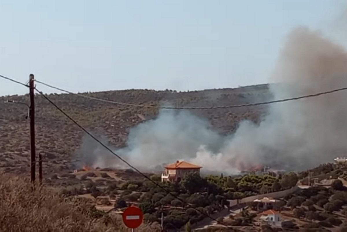 «Φουντώνει» η φωτιά στο Σούνιο – Τα δίνουν όλα οι πυροσβέστες για να προλάβουν το σκοτάδι