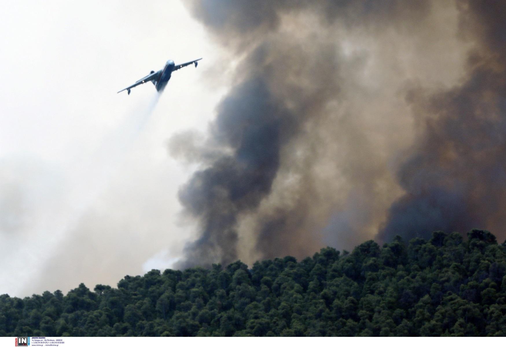 Φωτιά στο Βουπράσιο Αχαΐας – Μεγάλη κινητοποίηση της πυροσβεστικής