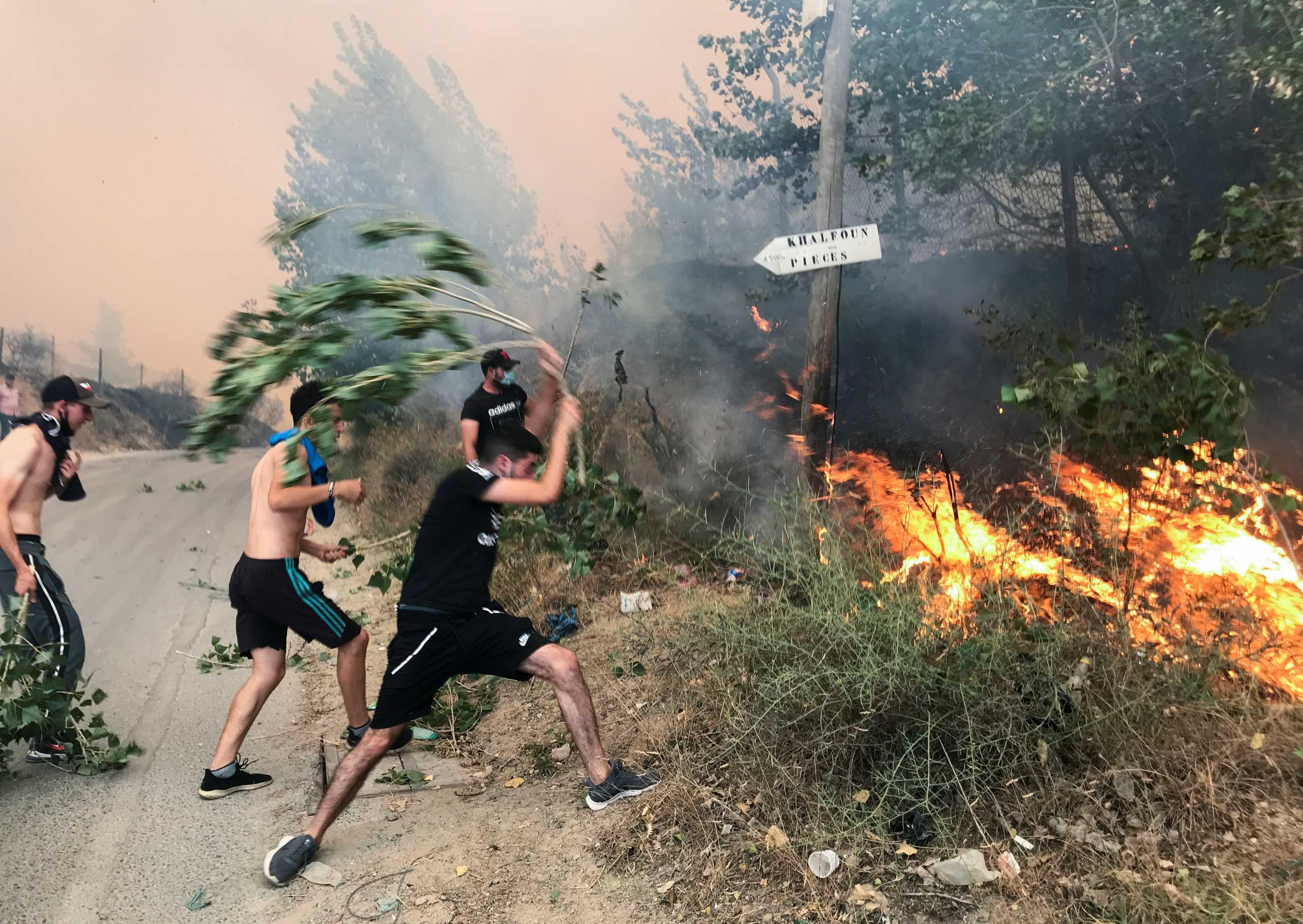 Πυρκαγιές σαρώνουν την Αλγερία – Τουλάχιστον 42 νεκροί