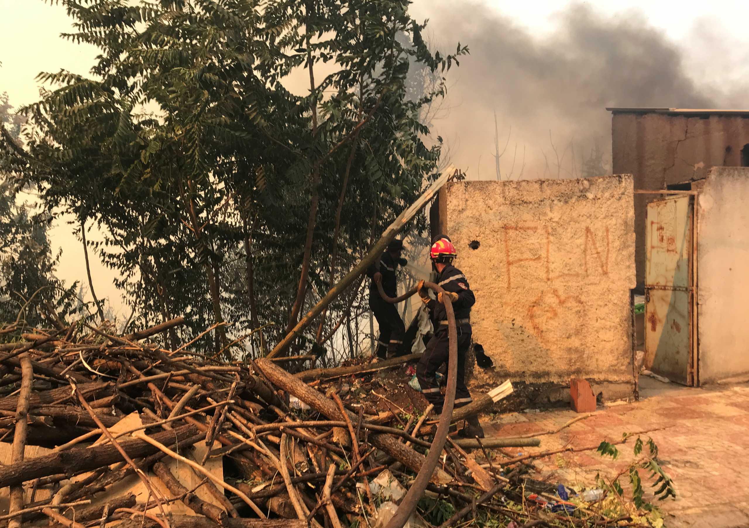 Φωτιές στην Αλγερία: Τουλάχιστον 65 οι νεκροί – Για εμπρησμό κάνουν λόγο οι αρχές