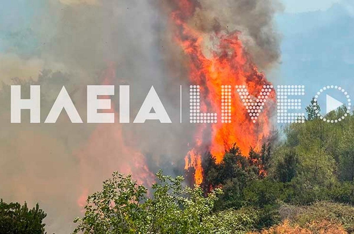 Μεγάλη αναζωπύρωση στην Ηλεία – Συναγερμός στην Αρκαδία όπου έχουν περάσει φωτιές από την Μεσσηνία και την Ηλεία