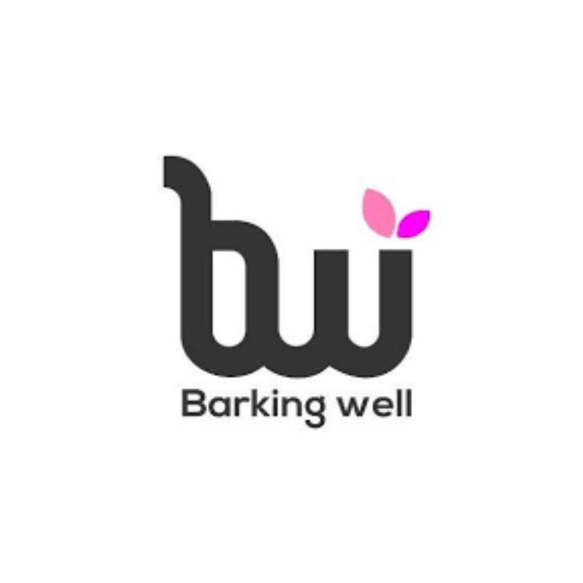 Barking Well Media: συνεργασία με την Dogs' Voice για περίθαλψη και νοσηλεία πυρόπληκτων ζώων