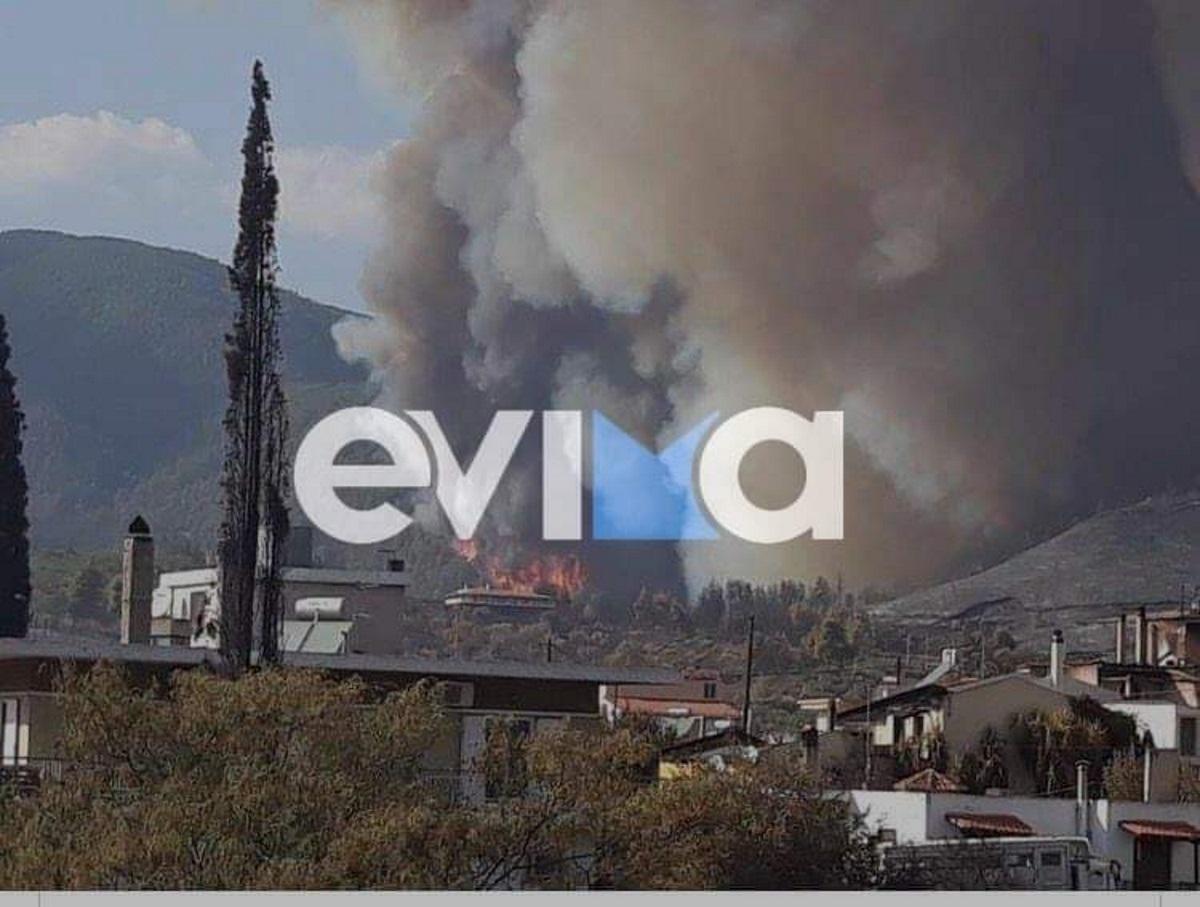 Φωτιά στην Εύβοια: Στις φλόγες σπίτια στη Δάφνη – Μεγάλη αναζωπύρωση προς τις Ροβιές