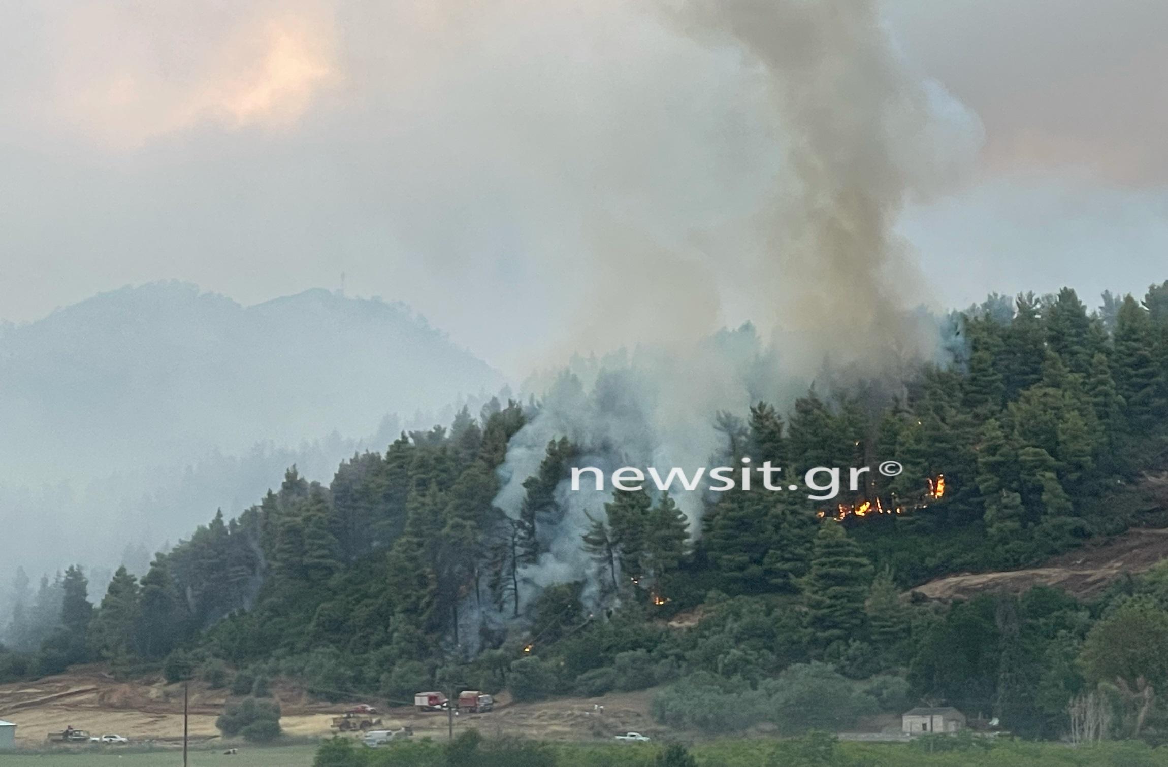 Φωτιά στην Εύβοια: Εικόνες βιβλικής καταστροφής στις Ροβιές – Καίγονται σπίτια