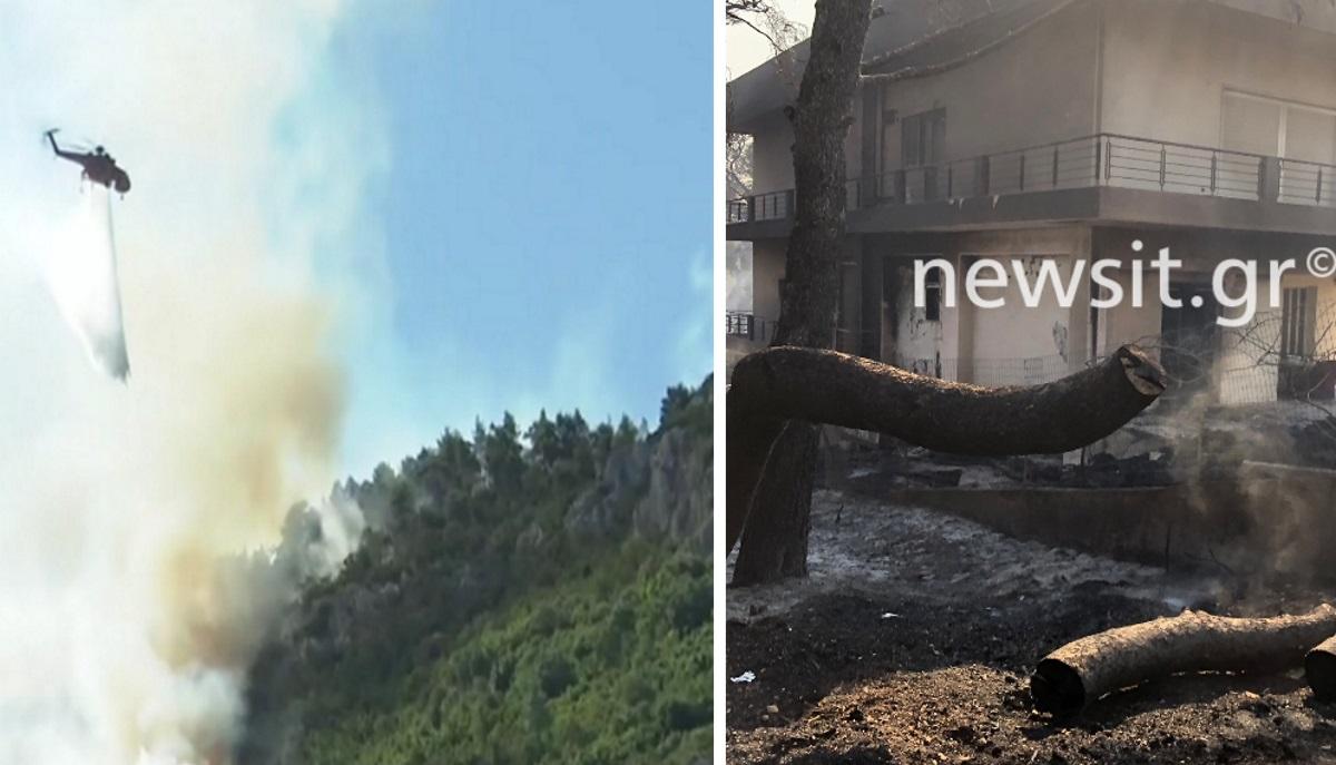 Μάχη με το χρόνο να μη φτάσει η φωτιά στα σπίτια της Μαλακάσας – Στάχτη περιουσίες στους Θρακομακεδόνες – Οι εικόνες του newsit.gr
