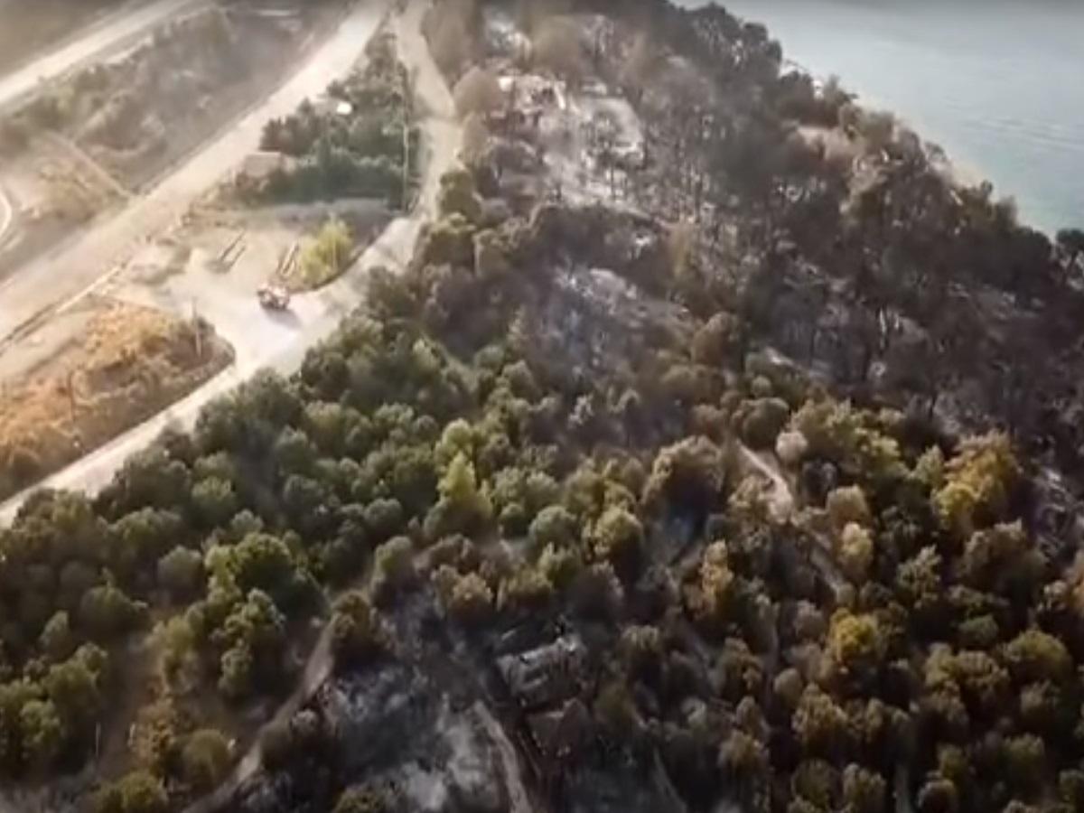 Φωτιά στην Αχαΐα: Τεράστια καταστροφή – Βίντεο από drone
