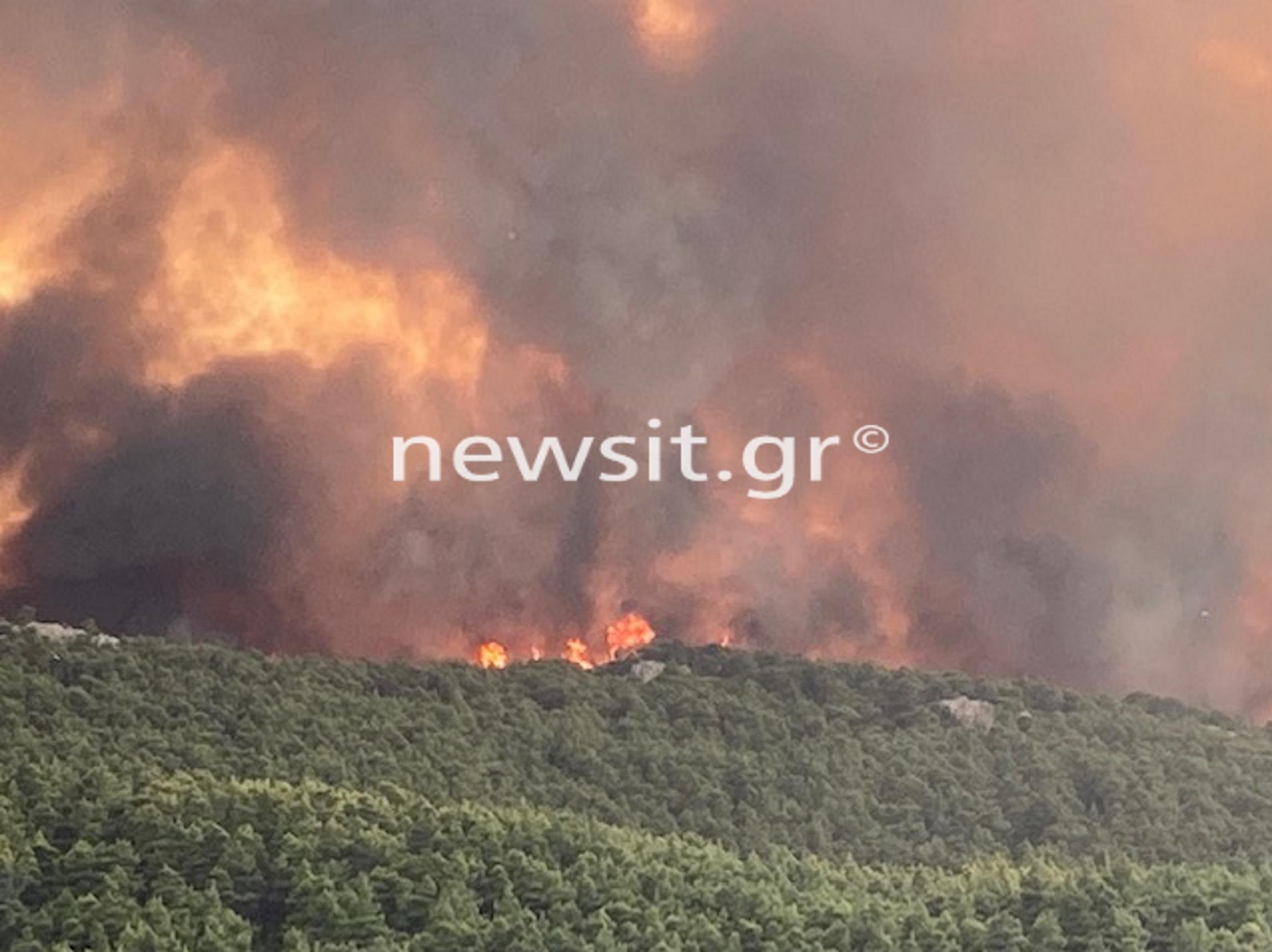 Φωτιά σε Δροσοπηγή - Κρυονέρι