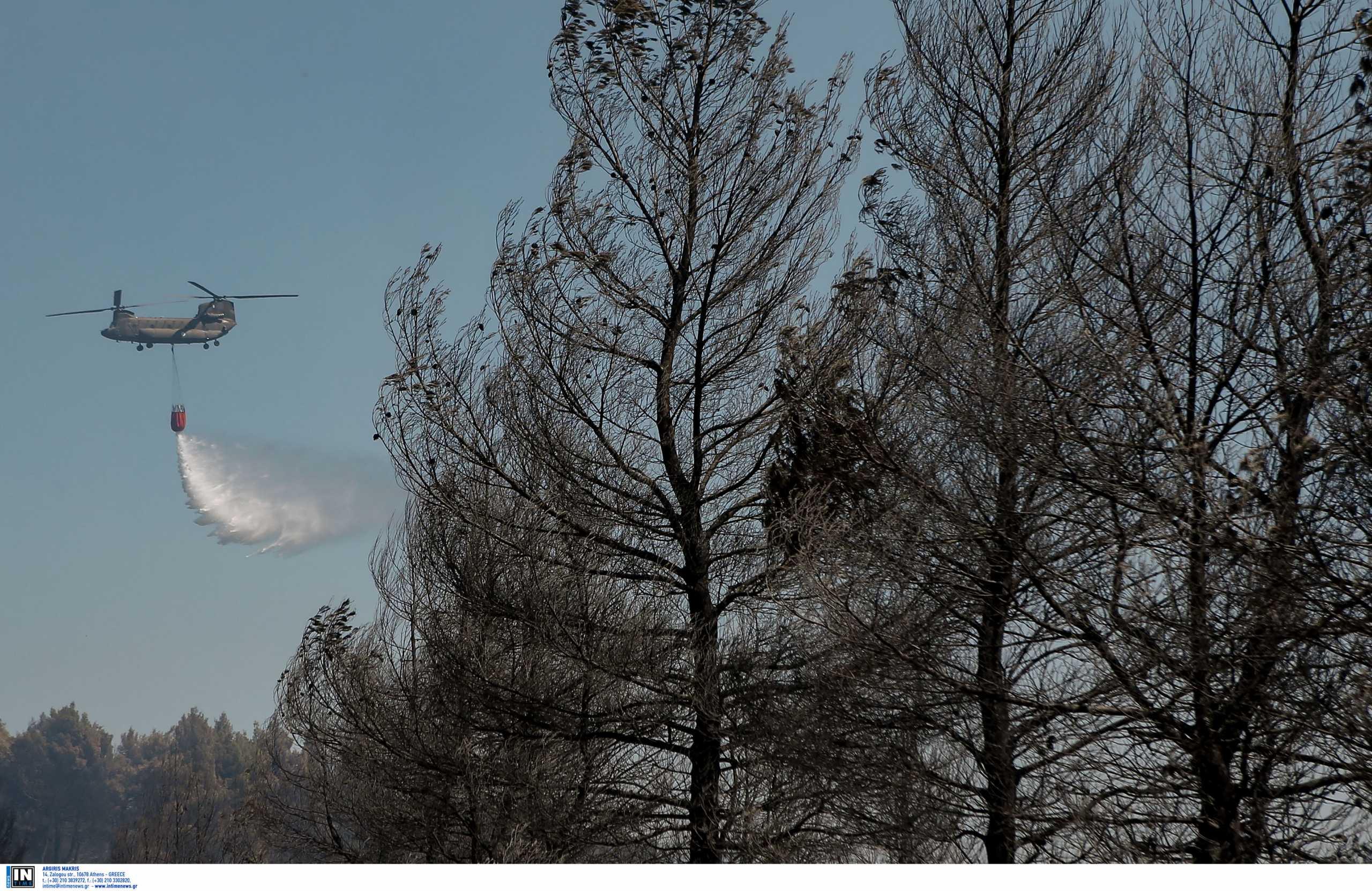 Γιώργος Κουμεντάκης: Παραιτήθηκε ο διοικητής της Αεροπορίας Στρατού