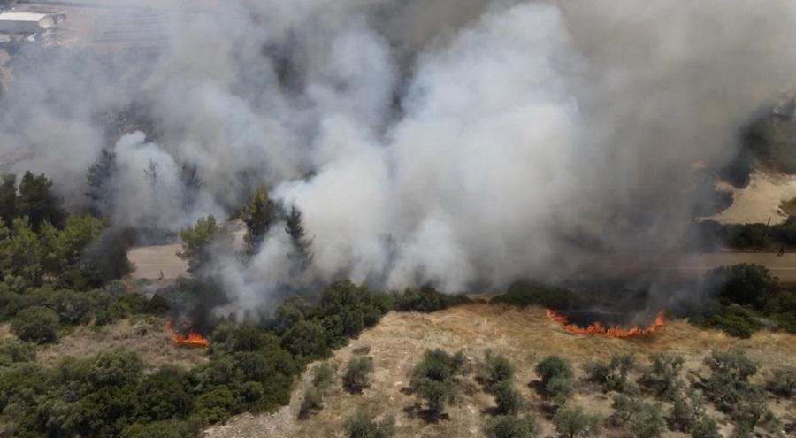 Αρνείται ότι έβαλε τις φωτιές στο Θεολόγο ο 14χρονος