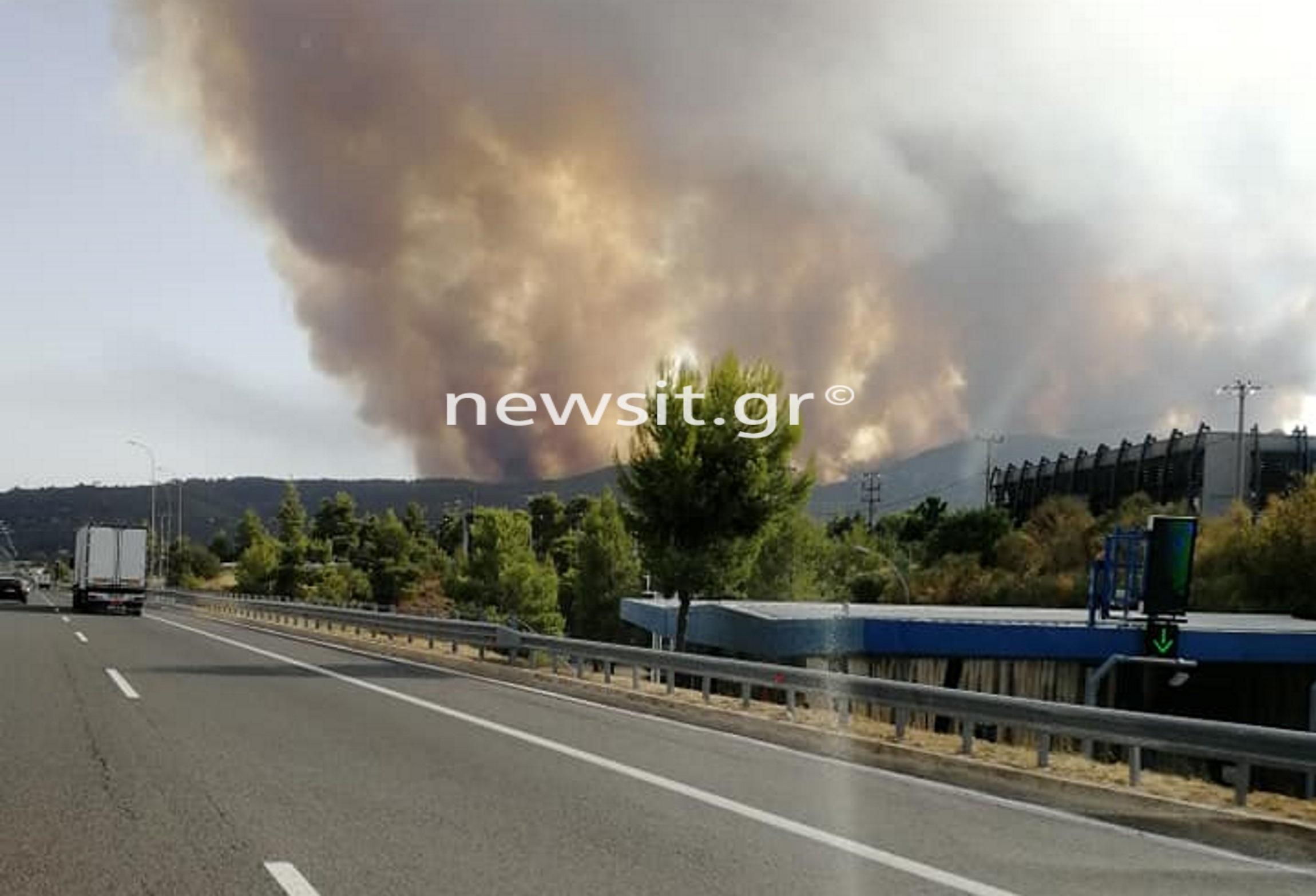 Φωτιά σε Δροσοπηγή – Κρυονέρι: Διακόπηκε η κυκλοφορία και στα δύο ρεύματα της Εθνικής Οδού από Θήβα ως Καλυφτάκη