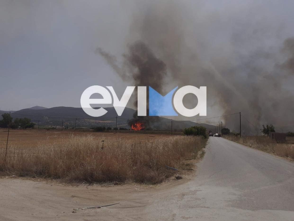 Νέα μεγάλη φωτιά στην Εύβοια