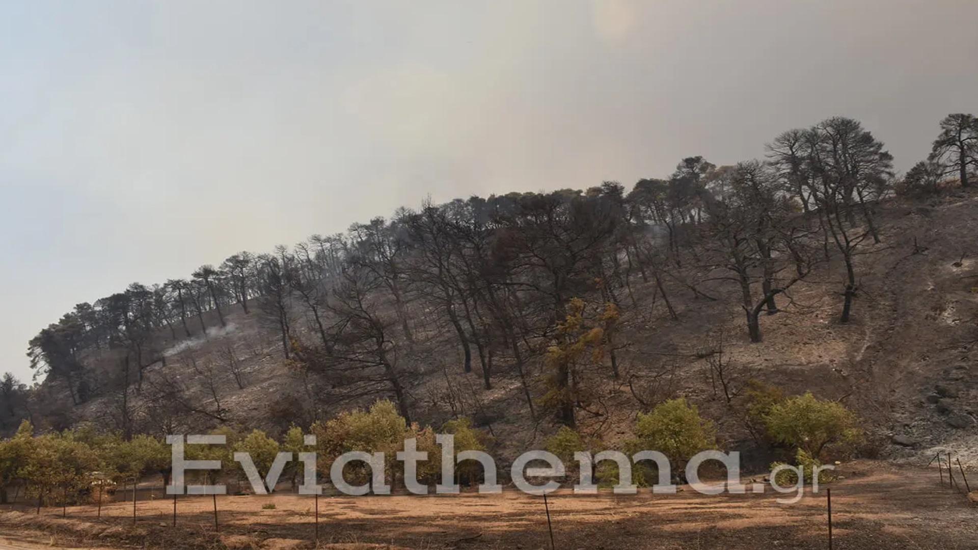 Φωτιά στην Εύβοια: Εγκλωβίστηκαν πυροσβέστες στους Κουρκουλούς – Εκκενώνονται συνεχώς οικισμοί