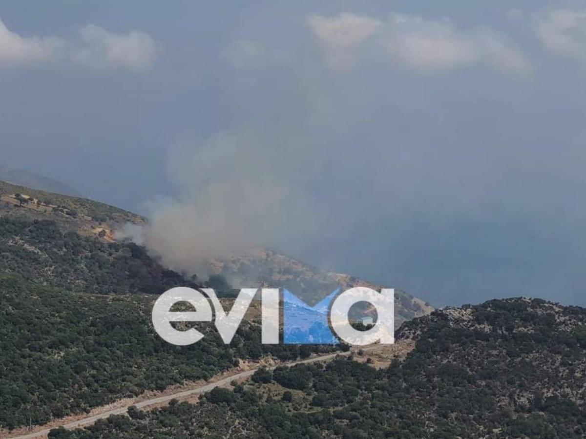 Φωτιά στην Εύβοια κοντά στο Θύμι Καρύστου: Καίει δασική έκταση