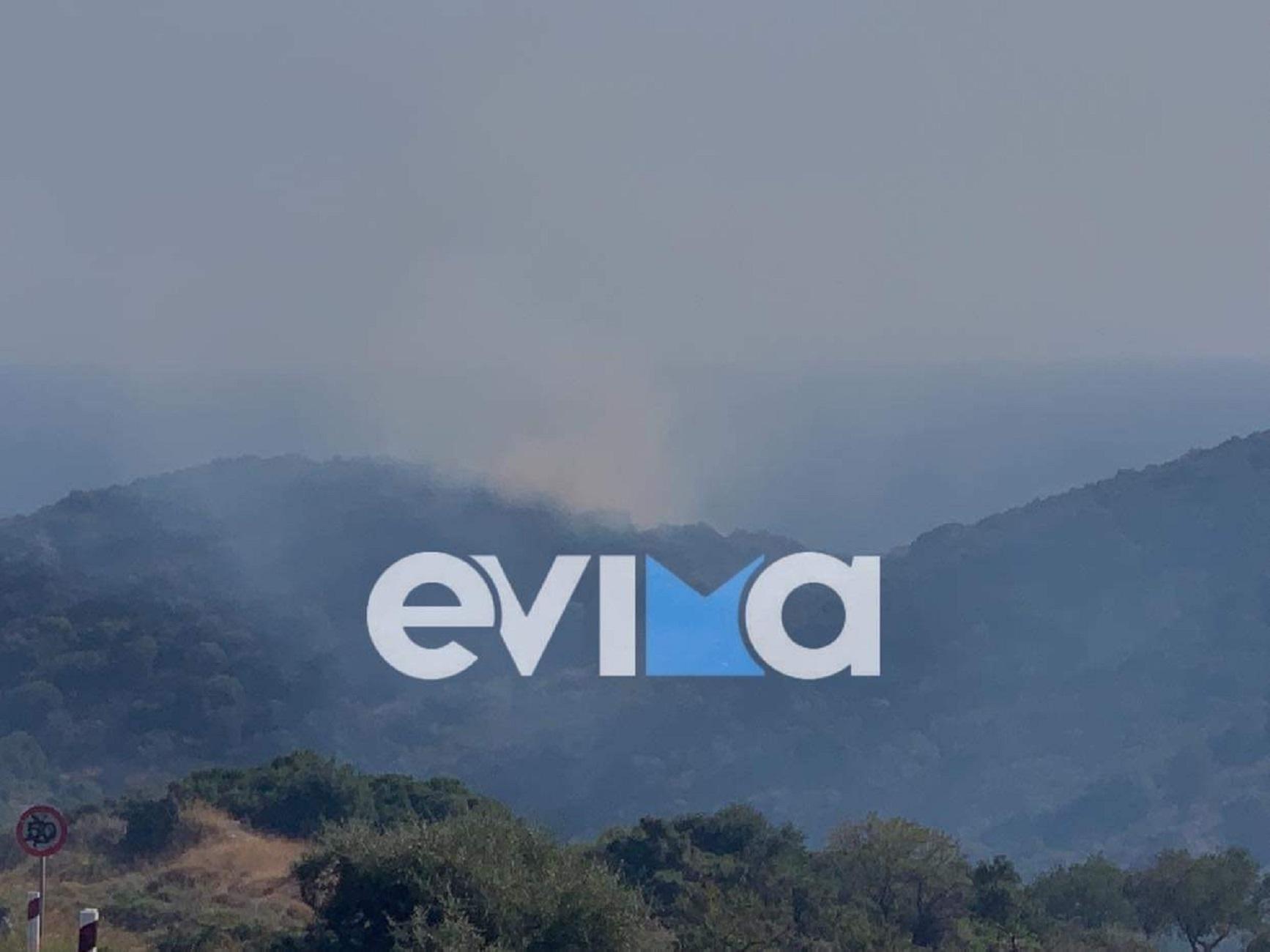 Φωτιά στην Εύβοια στην περιοχή Πετριές