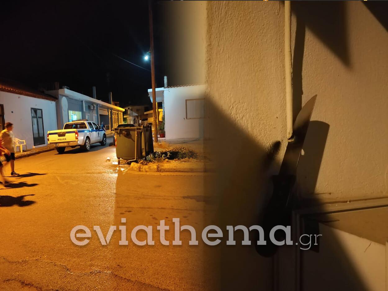 Ψαχνά Ευβοίας: 52χρονη επιχείρησε να κόψει καλώδιο της ΔΕΗ με μαχαίρι