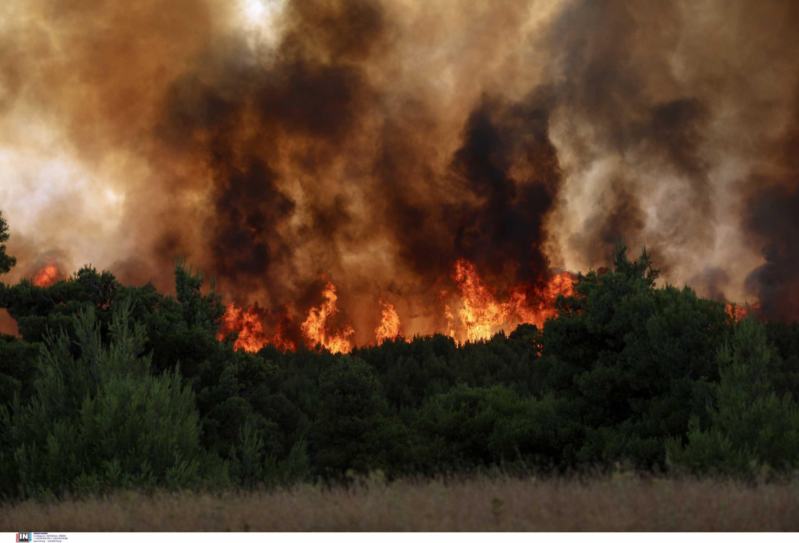 Γρεβενά: Εκκενώθηκαν 6 οικισμοί λόγω της μεγάλης φωτιάς
