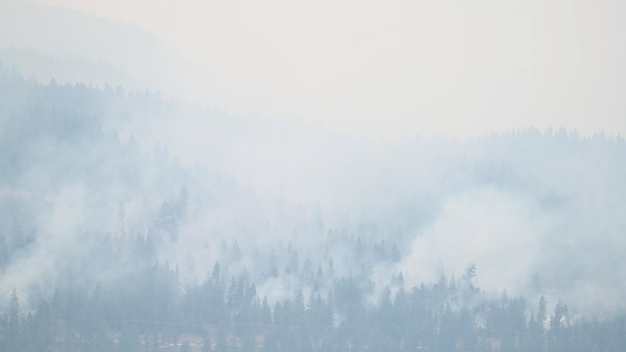 Μεγάλη φωτιά στην Γαλλία: Απομακρύνονται χιλιάδες κάτοικοι και τουρίστες στο Σεν Τροπέ – Στη μάχη 750 πυροσβέστες