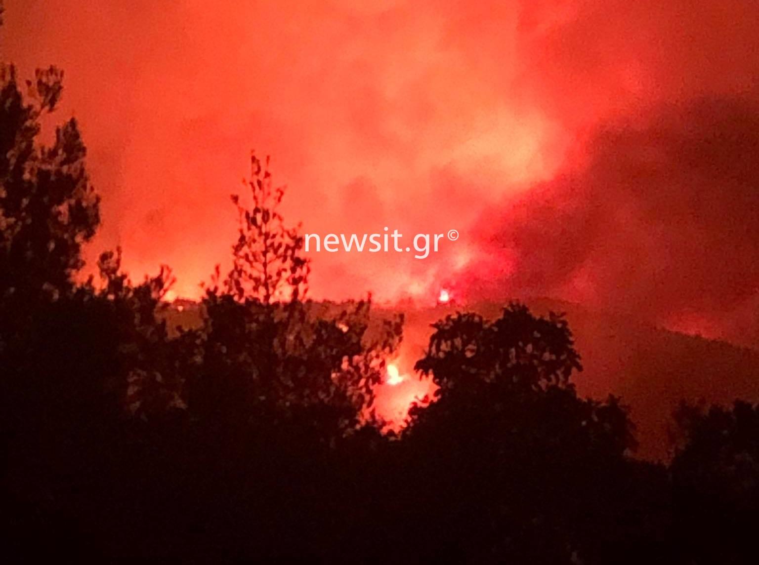 Φωτιά στα Βίλια: Μάχη να μη φτάσουν οι φλόγες στο Πόρτο Γερμενό
