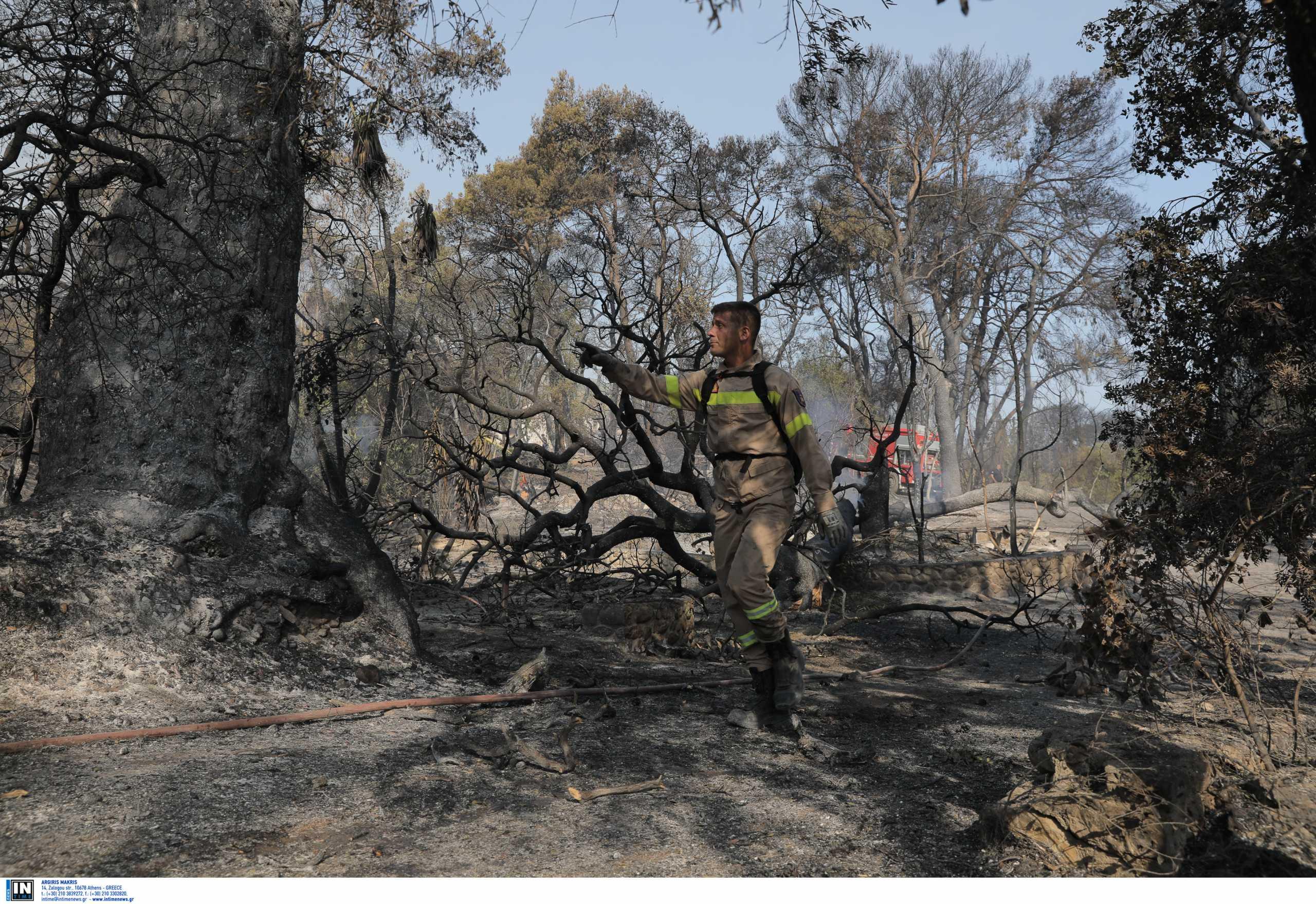 Αχαΐα: Σε κατάσταση έκτακτης ανάγκης οι πυρόπληκτες περιοχές