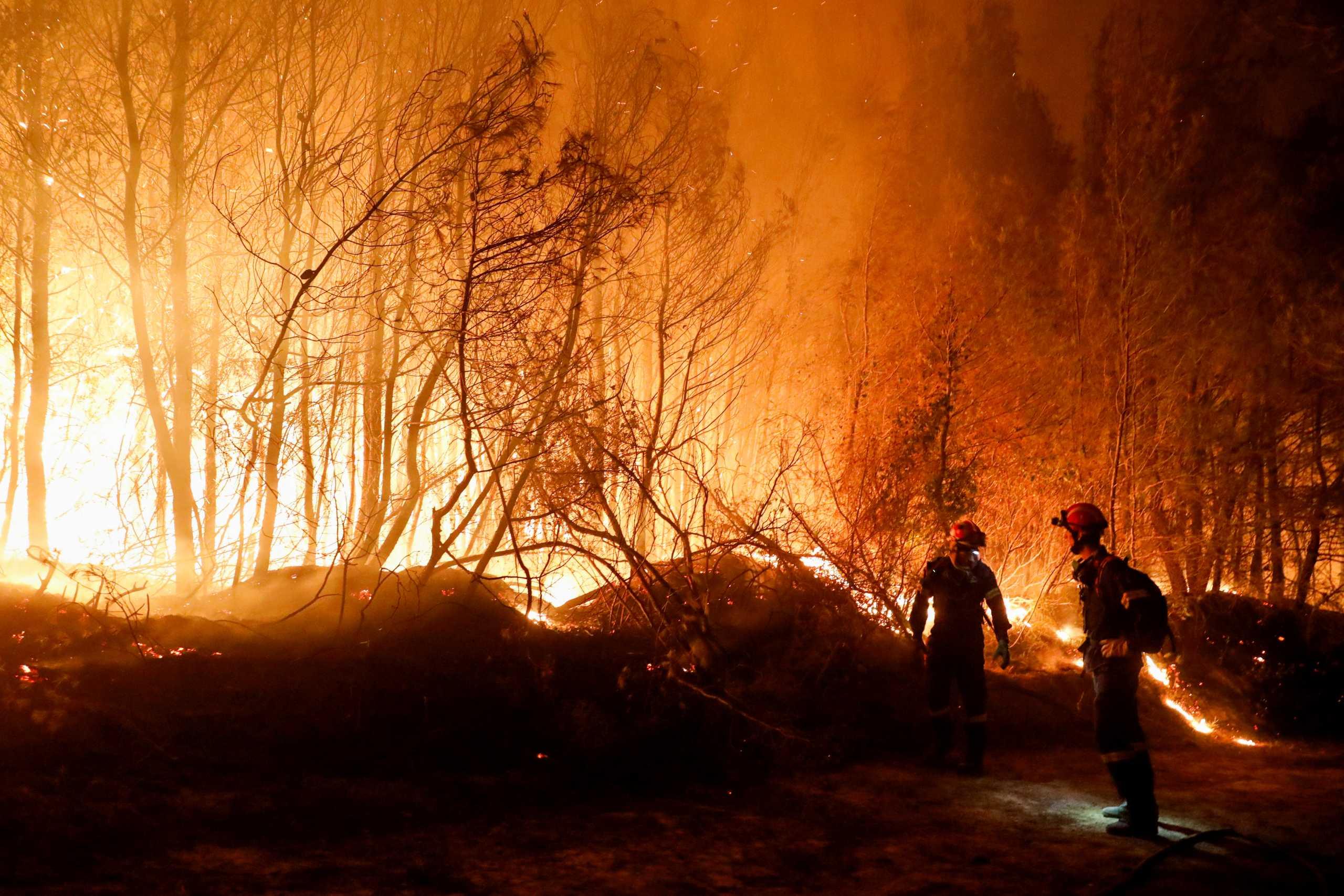 Χρήστος Ζερεφός: Επικίνδυνος ο Αύγουστος – Ο καύσωνας θα φέρει μεγάλες πυρκαγιές