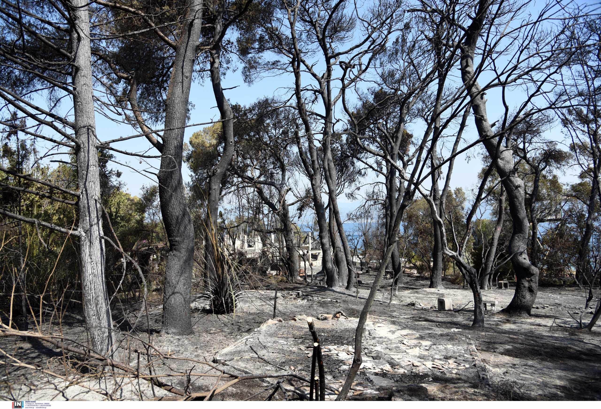 Φωτιά στην Αχαΐα: Εμπρησμός στη Δροσιά, αμέλεια στην Ελεκίστρα