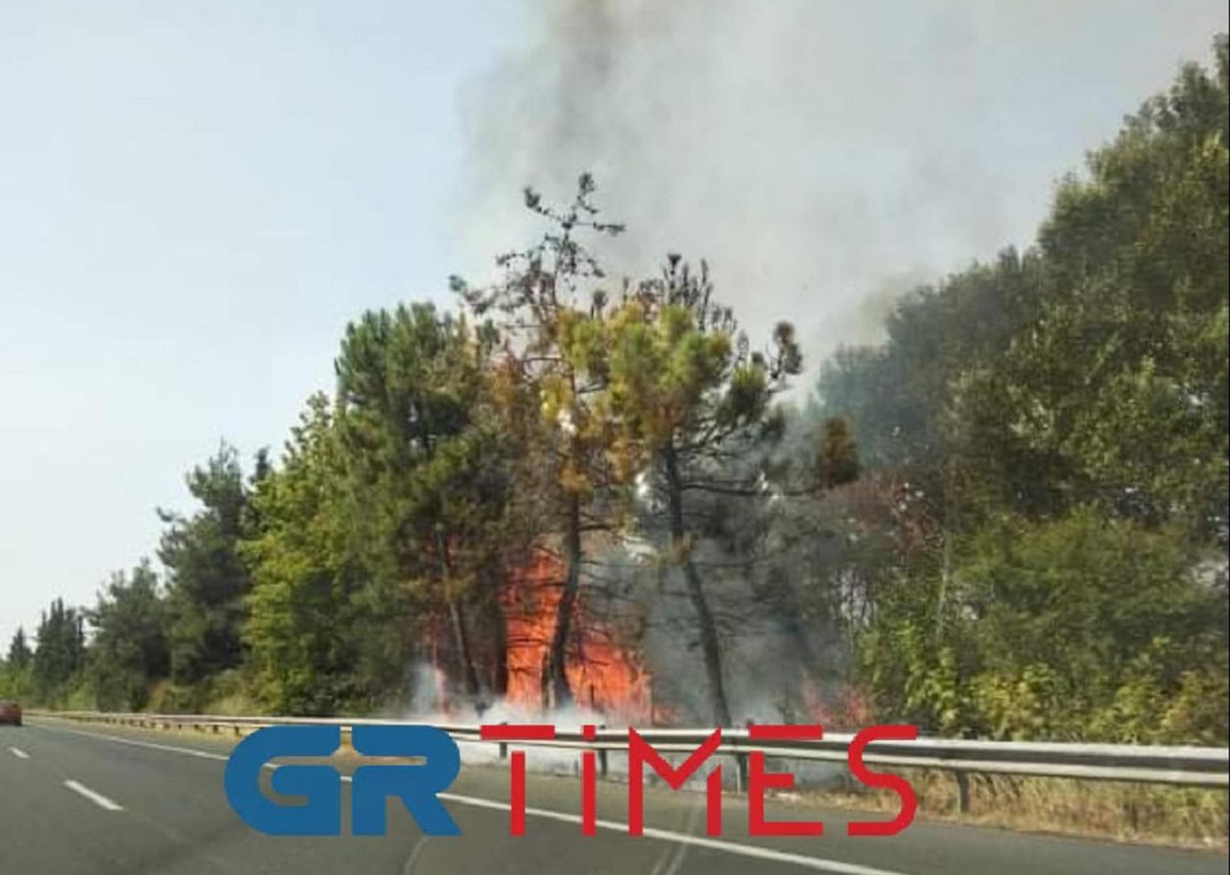 Φωτιά στην εθνική οδό Αθήνας – Θεσσαλονίκης