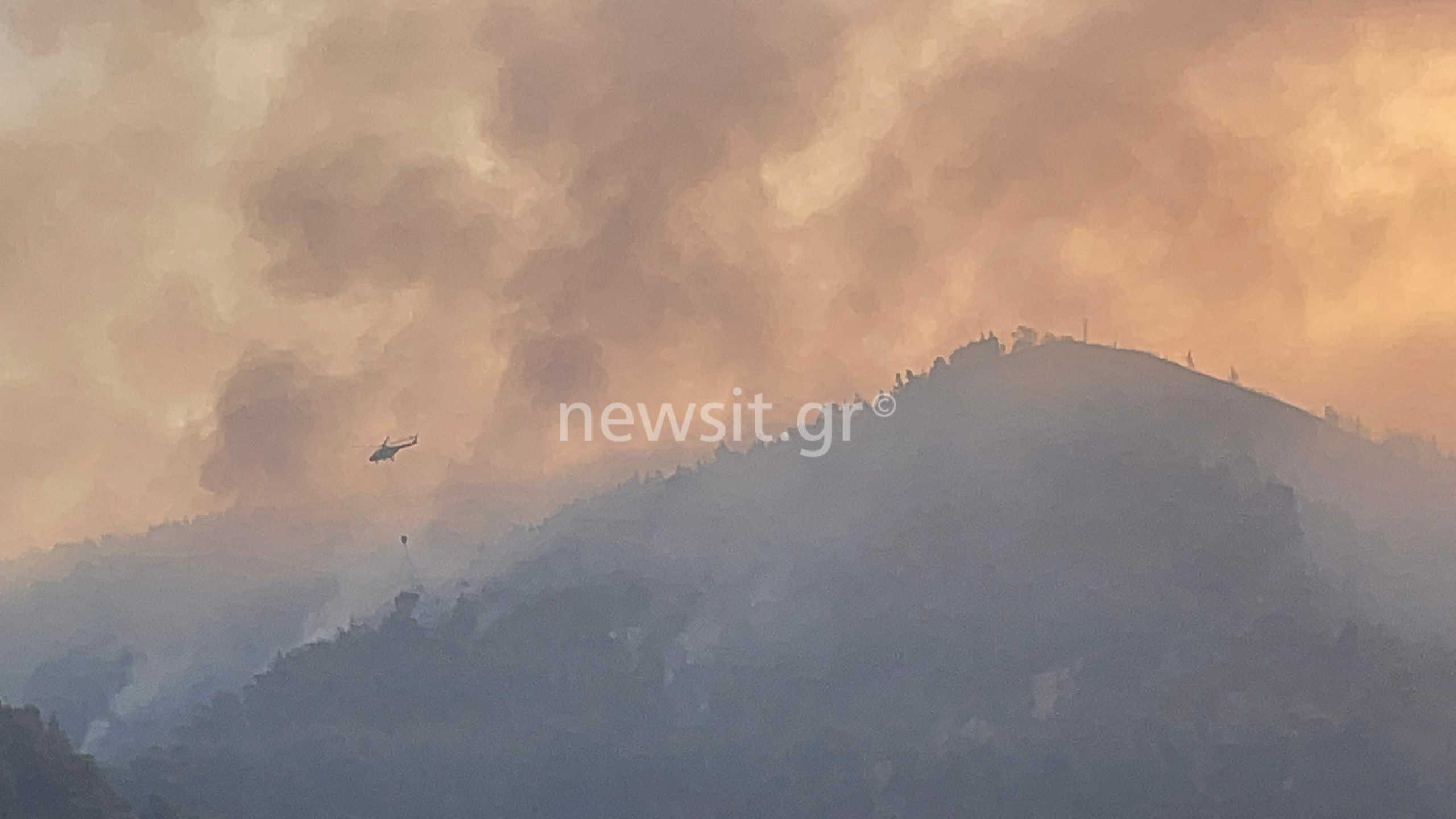 Φωτιά στην Εύβοια: Δραματική επιχείρηση εκκένωσης 158 ανθρώπων από Κρύα Βρύση και Αγία Άννα