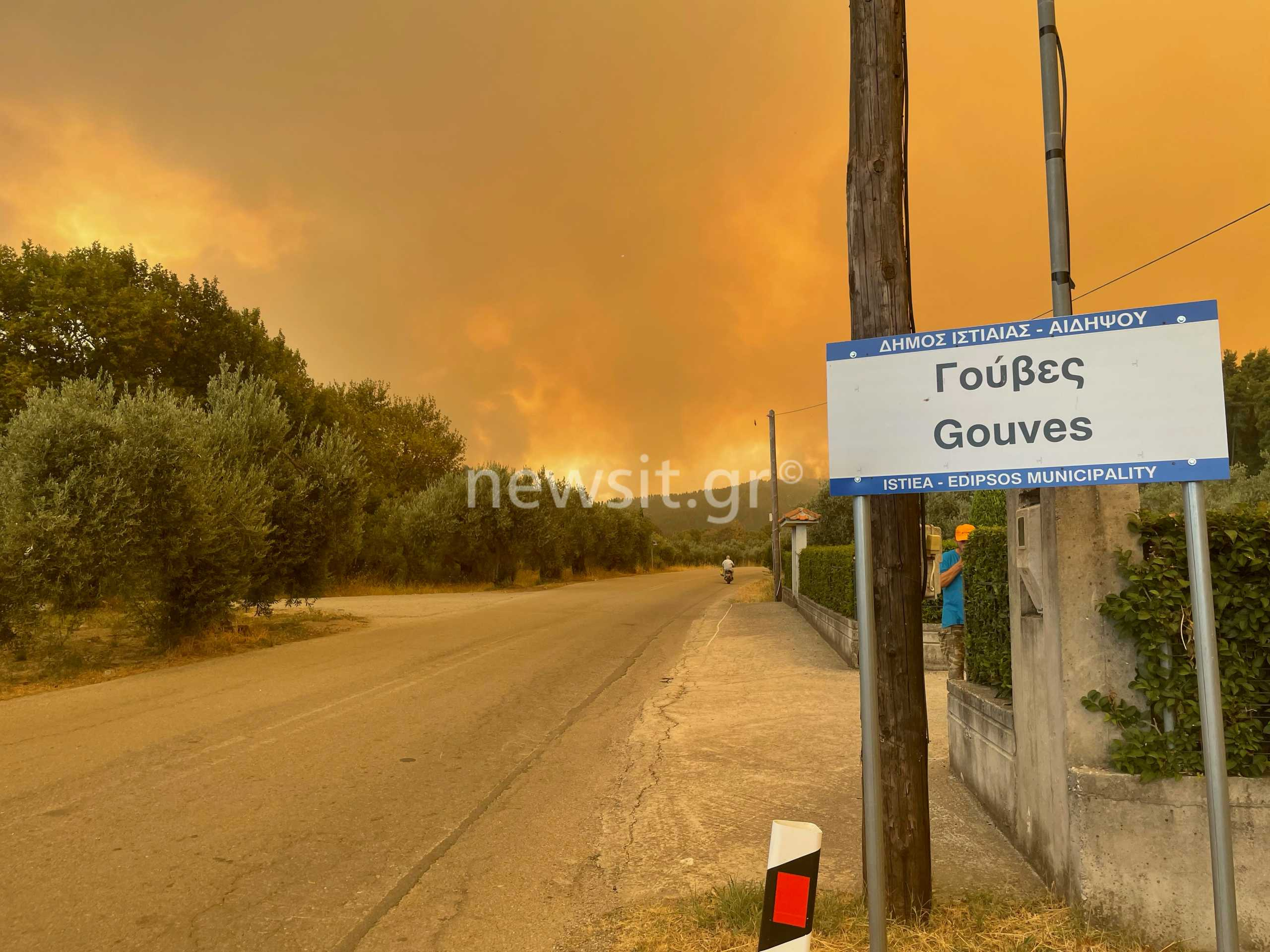 Φωτιά στην Εύβοια: Σκληρή μάχη να μην καούν τα Ελληνικά – Επεκτείνεται το πύρινο μέτωπο στον Δήμο Ιστιαίας