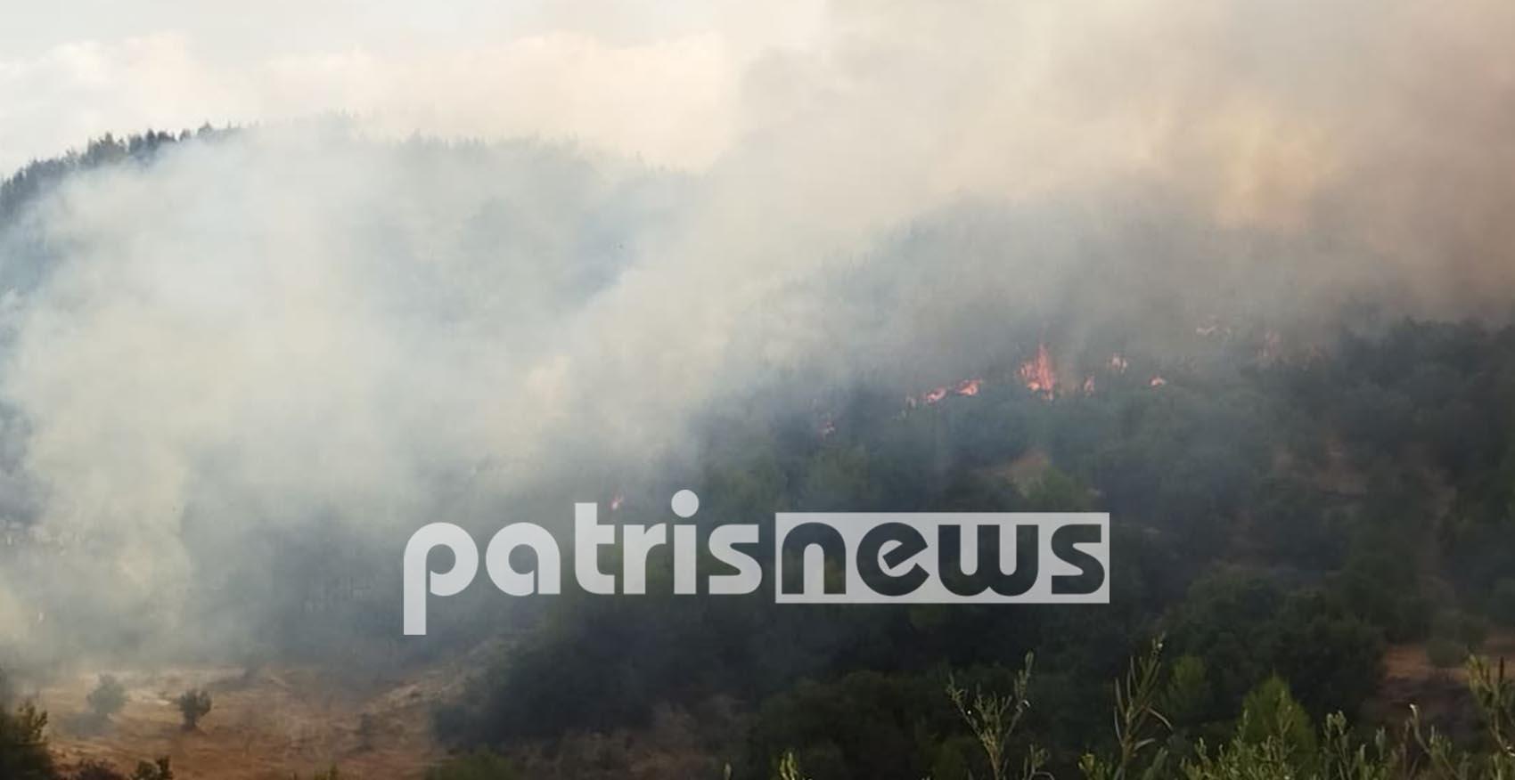Φωτιά στην Ηλεία: Φουντώνουν ξανά οι φλόγες – Απειλούν να περάσουν και στην Αρκαδία