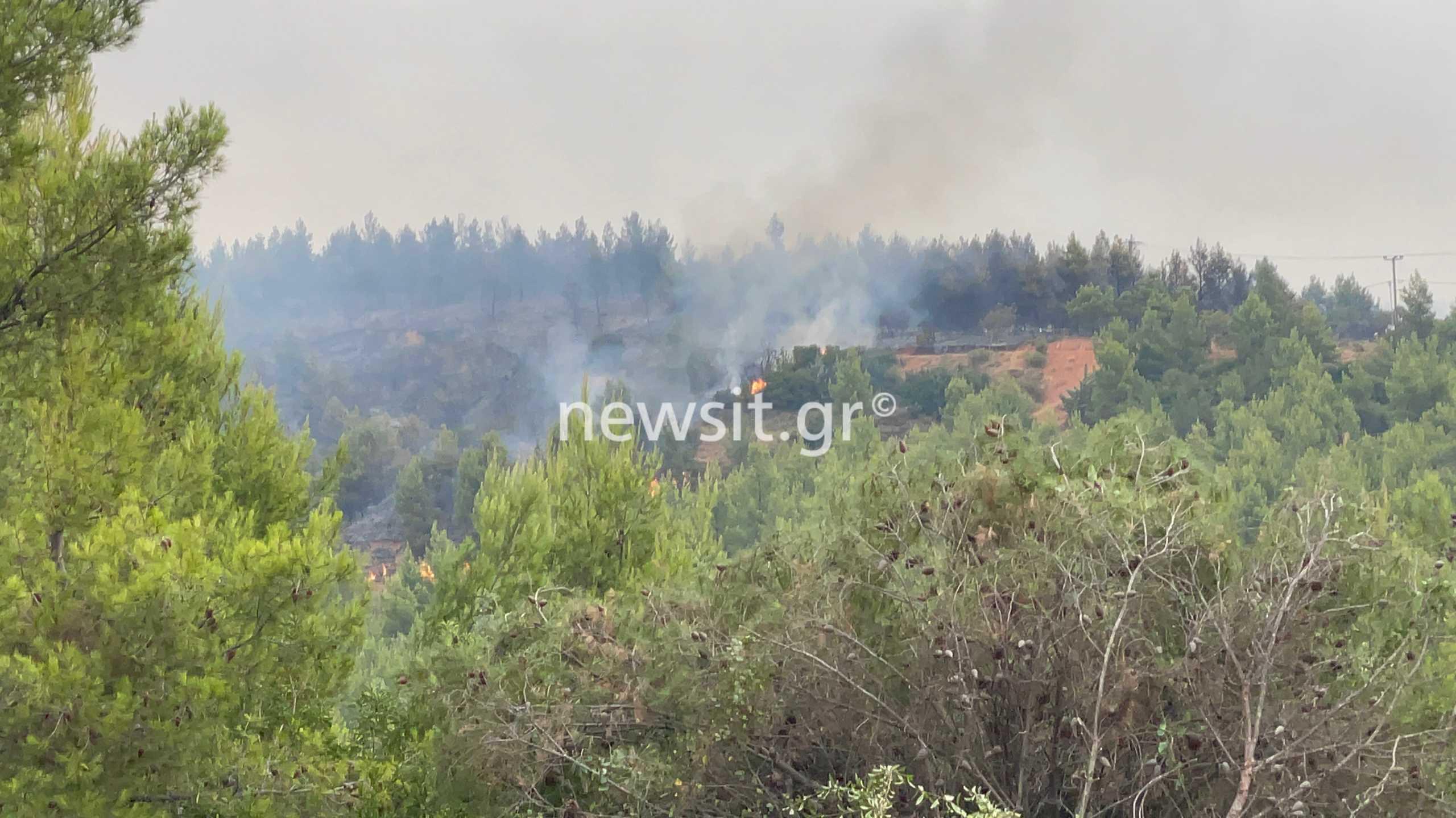 Μήνυμα 112 για την φωτιά στην Αττική – Εκκενώστε Μαλακάσα, Πολυδένδρι και Καπανδρίτι