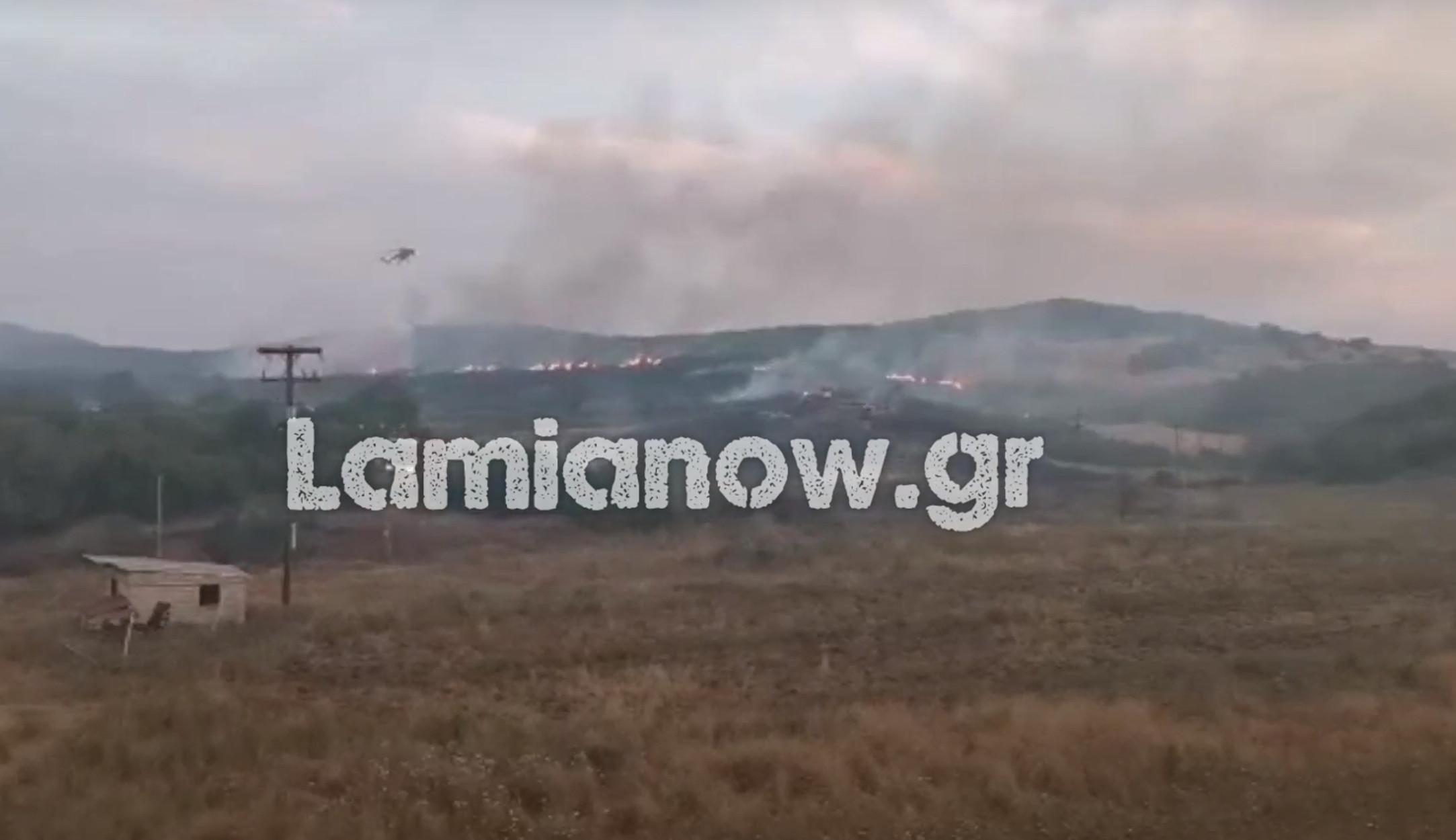 Φωτιά και στην Λαμία! Μεγάλη κινητοποίηση της Πυροσβεστικής