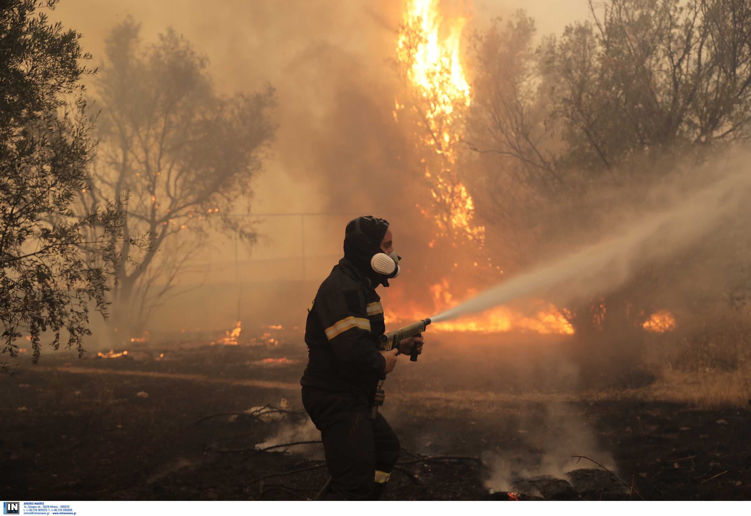 Υπόνοιες για οργανωμένο σχέδιο εμπρησμών πίσω από φωτιές – Τα μέτρα για τους πληγέντες