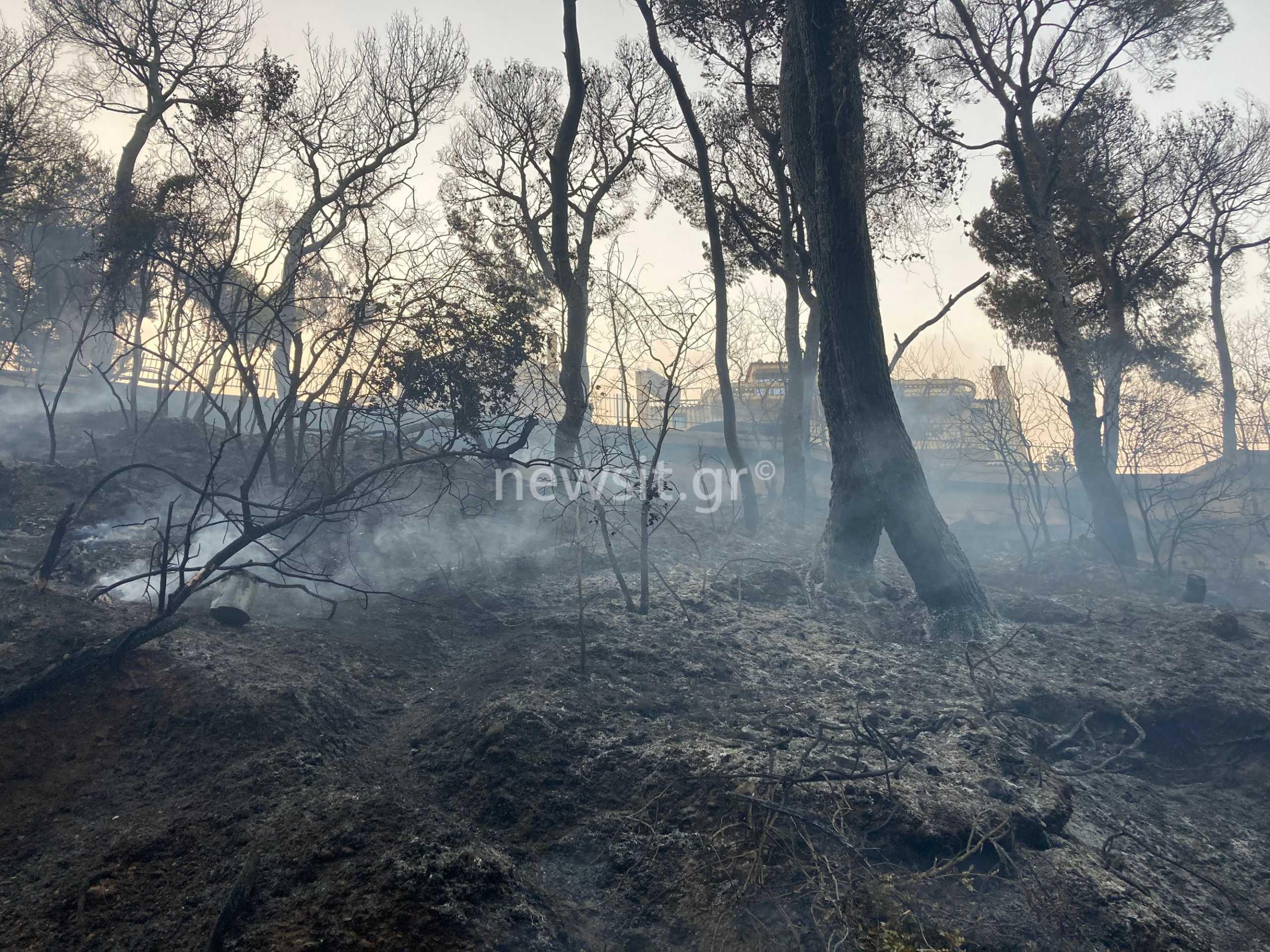 Ευθύμιος Λέκκας: Επτά φορές πιο πιθανό να υπάρξουν πλημμύρες μετά τις φωτιές