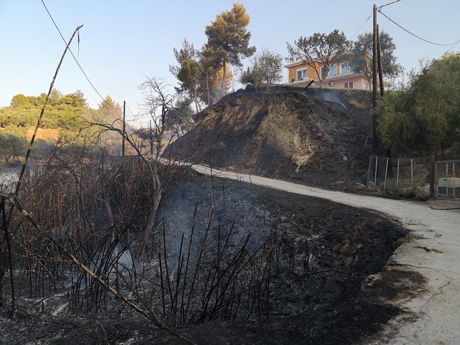 Ζάκυνθος: Υπό έλεγχο η φωτιά στο Αργάσι – Καθοριστική η συμβολή των εναέριων μέσων