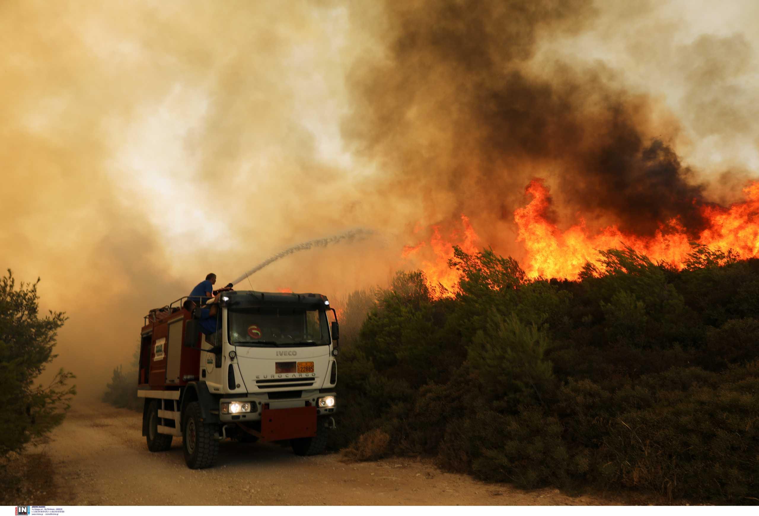Χαλκιδική: Σε ύφεση η φωτιά που προκλήθηκε από κεραυνούς