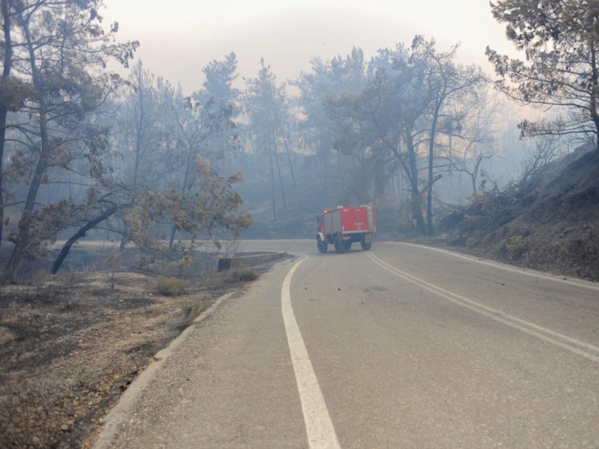 Φωτιά Ρόδος: Σε ύφεση η πυρκαγιά – Τεράστια καταστροφή