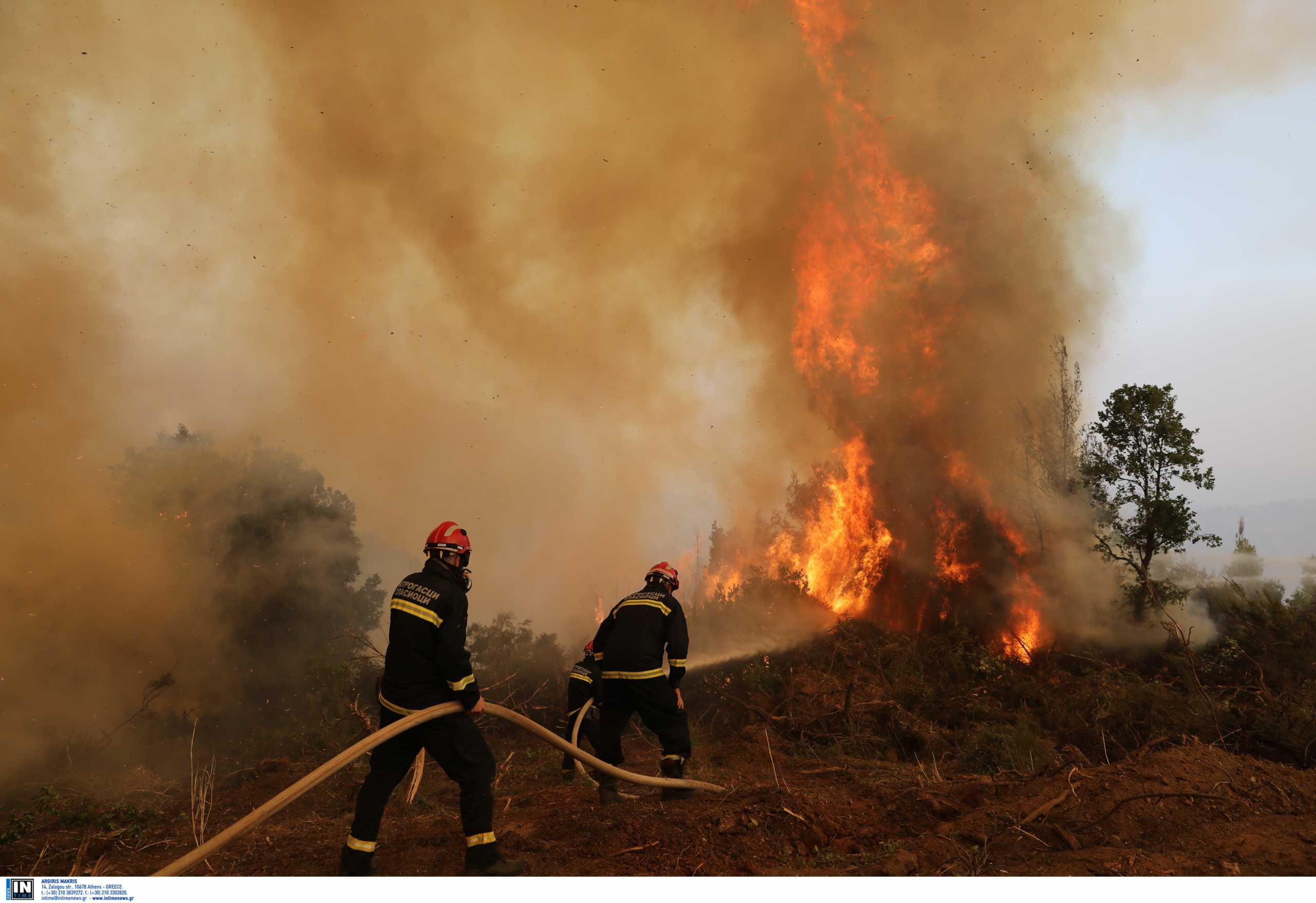Φωτιά στη Μάνη – Καίει σε δασική έκταση