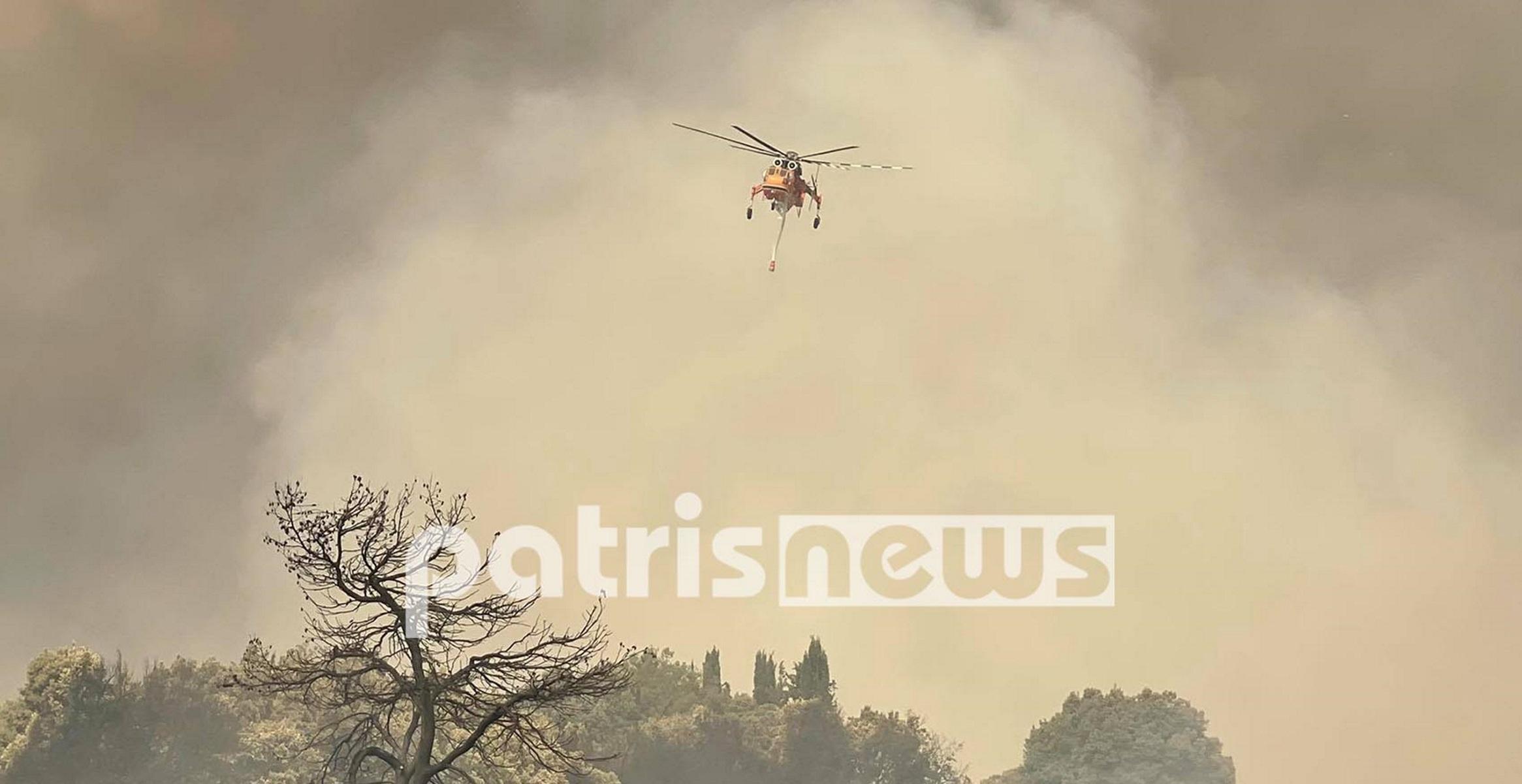 Φωτιές στην Ηλεία: Περιγράφουν πώς κατάφεραν να σώσουν τα σπίτια τους