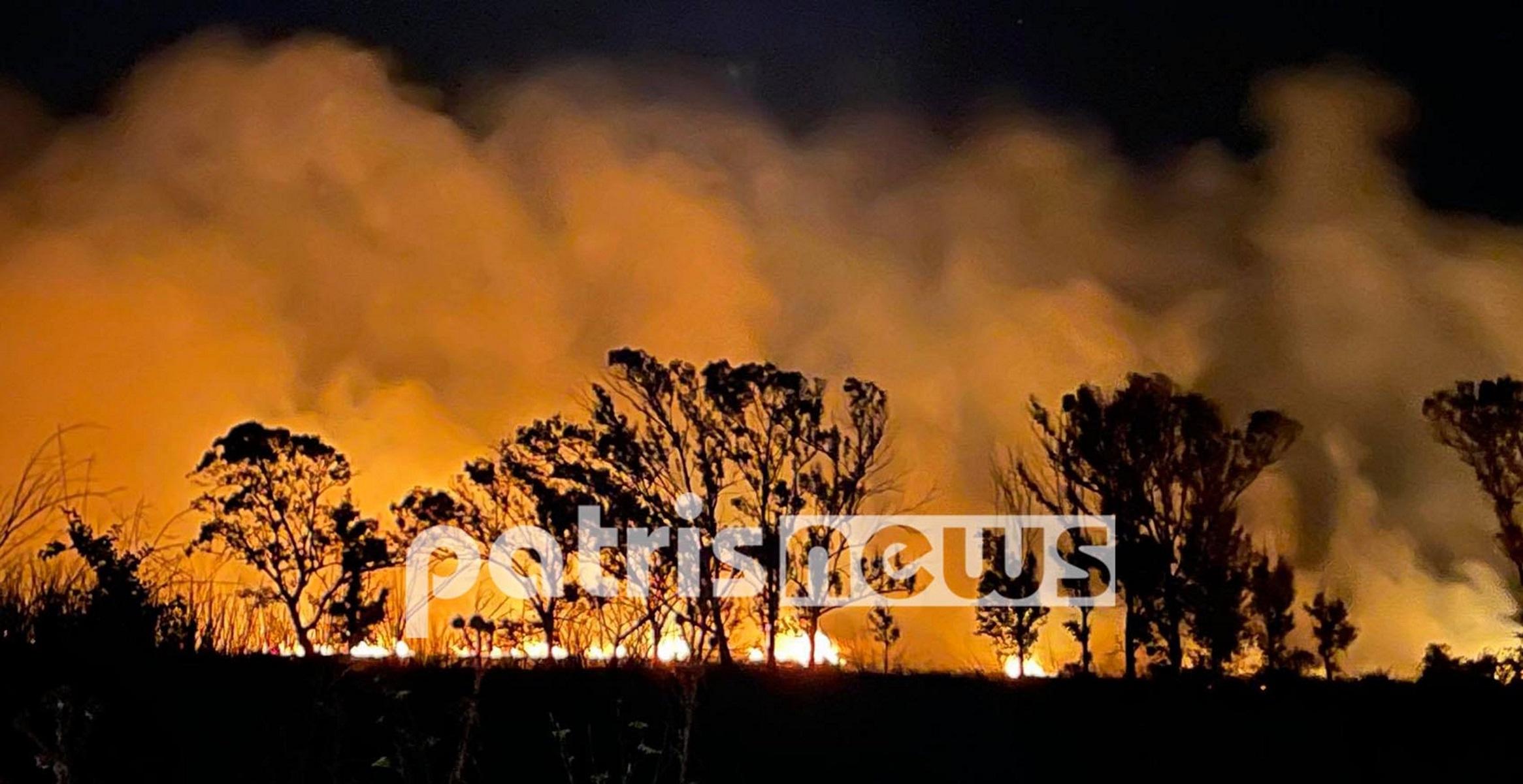 Φωτιά στην Ηλεία: Φλόγες τύλιξαν έκταση με θάμνους και καλαμιές στη Μούτελη