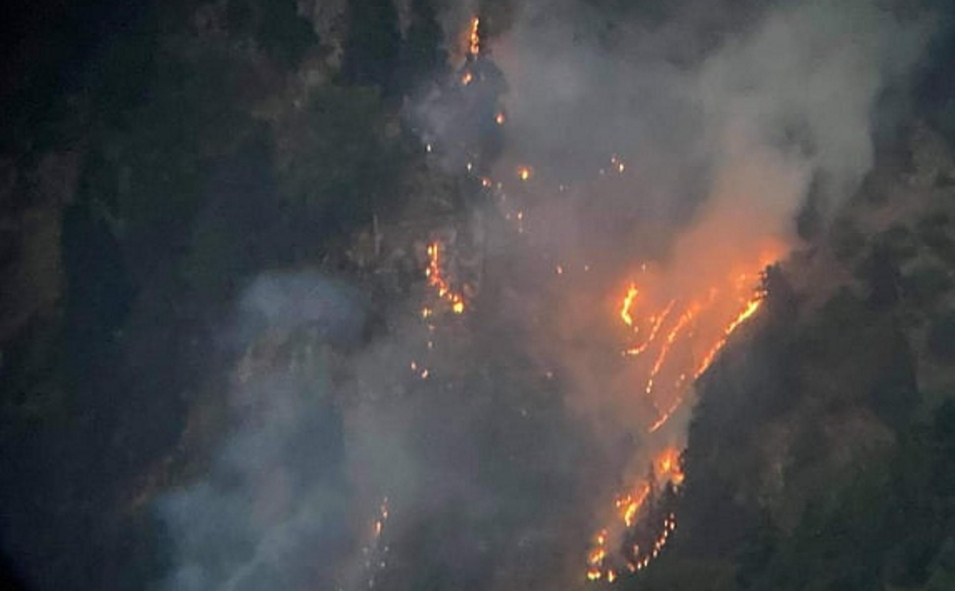 Φωτιά στα Στουρναρέικα Τρικάλων: Επικίνδυνη αναζωπύρωση πάνω από τα σπίτια