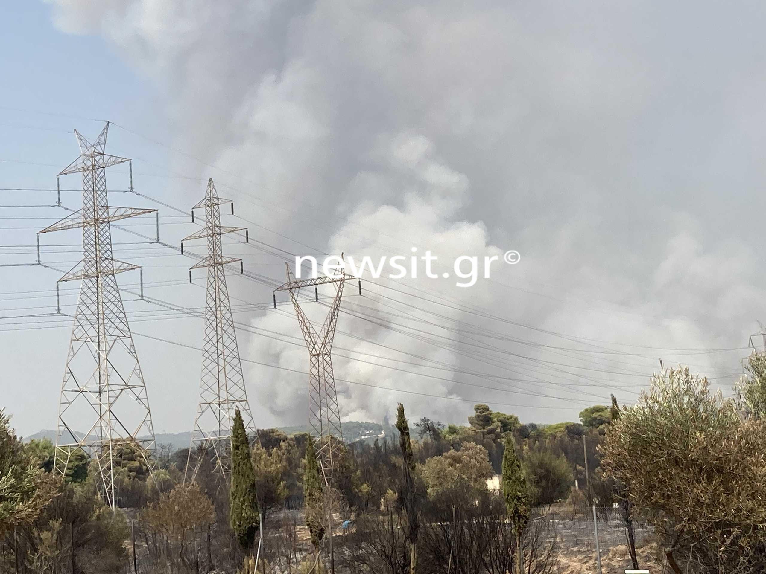 Φωτιά στην Αττική: Εκκενώθηκε γηροκομείο τα ξημερώματα στον Άγιο Στέφανο