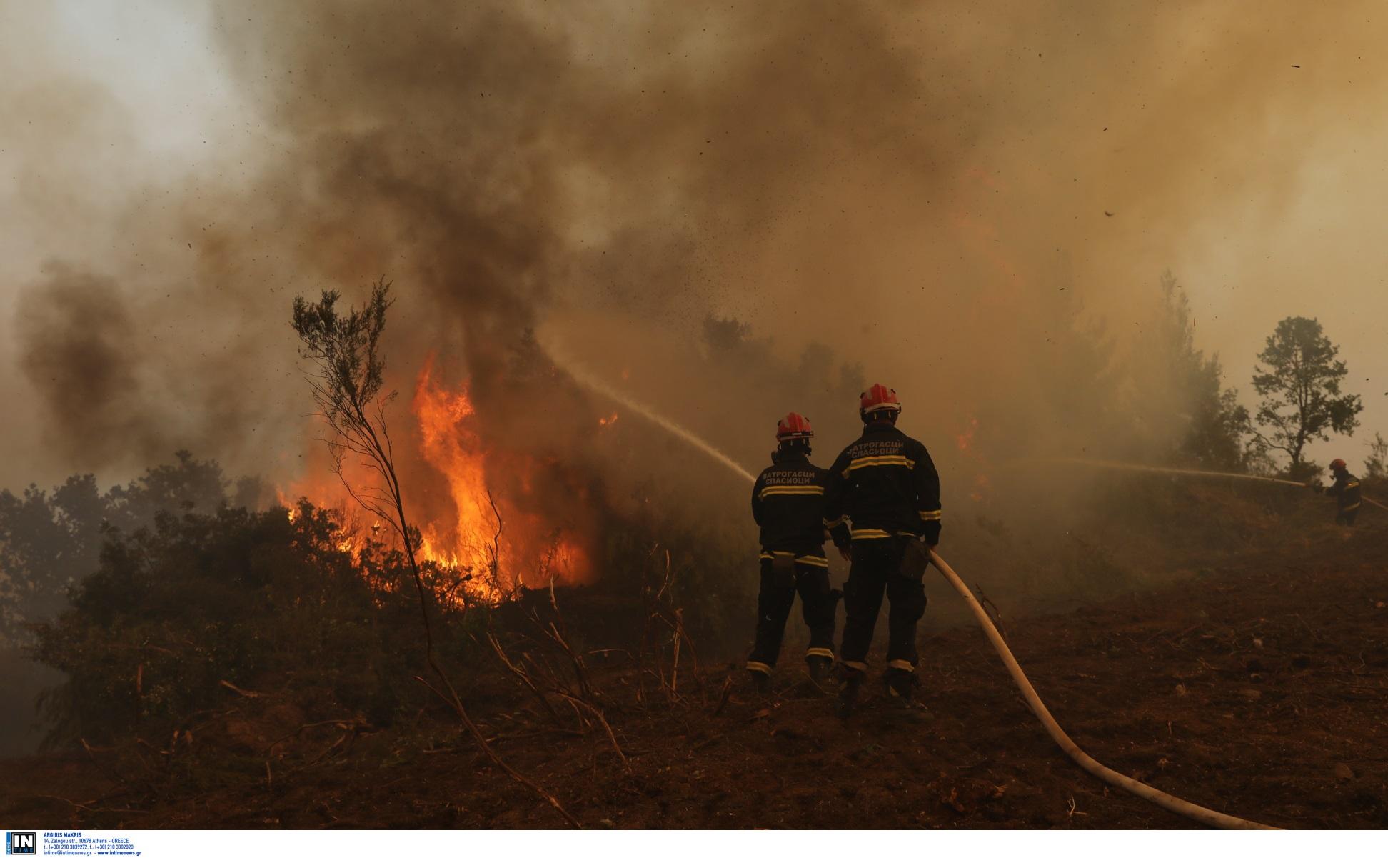 Φωτιές στην Αρχαία Ολυμπία: Διπλό μέτωπο σε Πελόπιο και Ηράκλεια – Φόβοι για εμπρησμούς