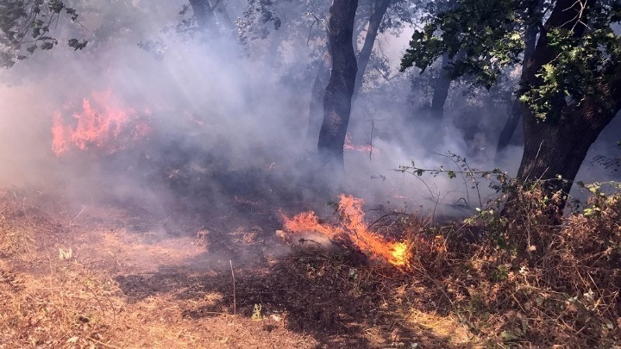 Φωτιά: Πολύ υψηλός κίνδυνος πυρκαγιάς σε τέσσερις περιφέρειες