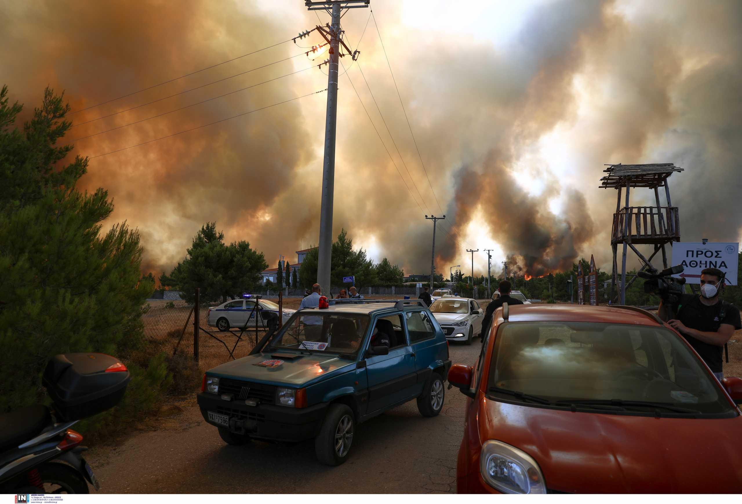 Άδωνις Γεωργιάδης για φωτιές: Ο πρωθυπουργός θα καταλογίσει τις ευθύνες όταν έρθει η ώρα