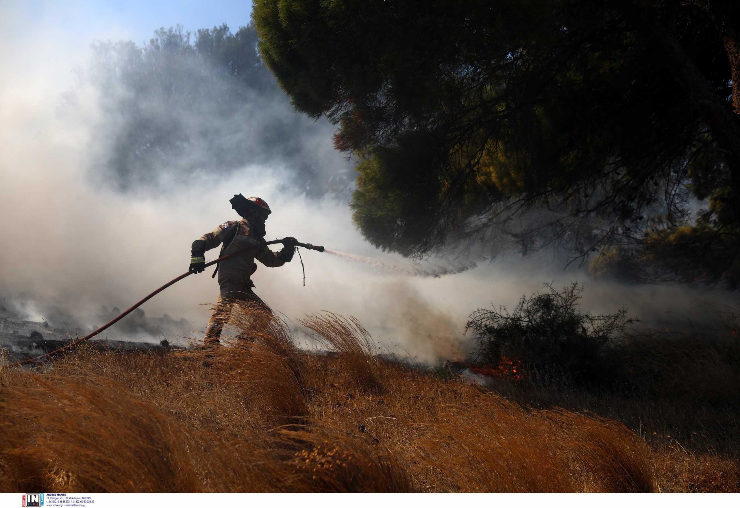 Φωτιά στην Κερατέα: Απεγκλωβίστηκε ηλικιωμένη – Εκκενώθηκαν 4 οικισμοί