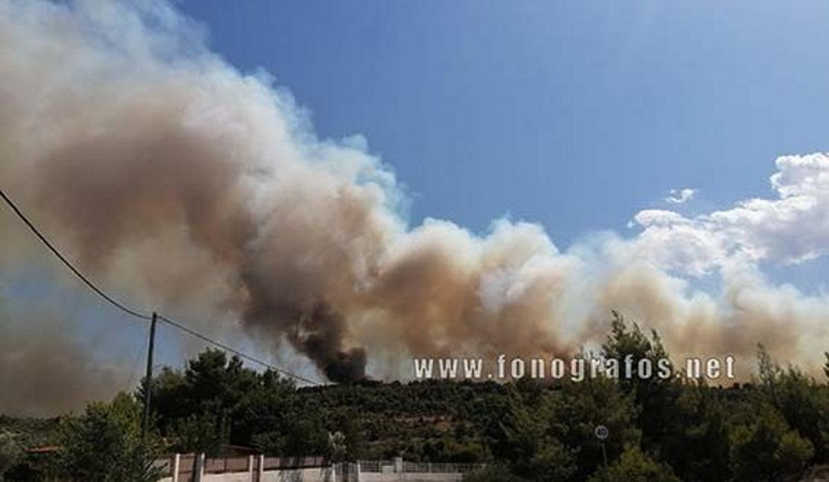 Φωτιά στη Μαλεσίνα: Λίγο πριν το Μοναστήρι οι φλόγες – Ανακοινώσεις για σχέδιο εκκένωσης