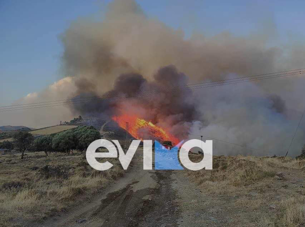 Φωτιά στην Κάρυστο: Αναζωπύρωση στο Μαρμάρι, στον οικισμό Φυγιά