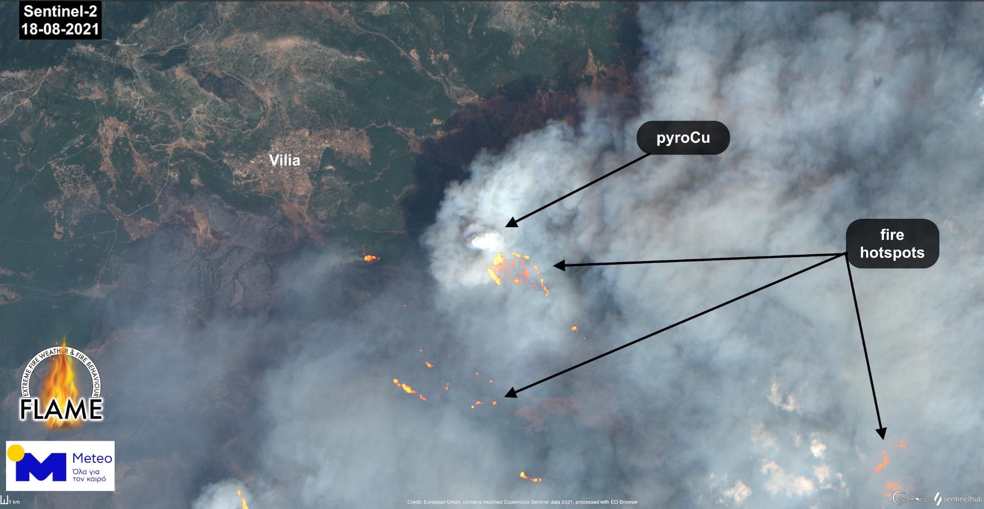 Φωτιά στα Βίλια: Έτσι εξηγείται η «έκρηξη» δασικής πυρκαγιάς