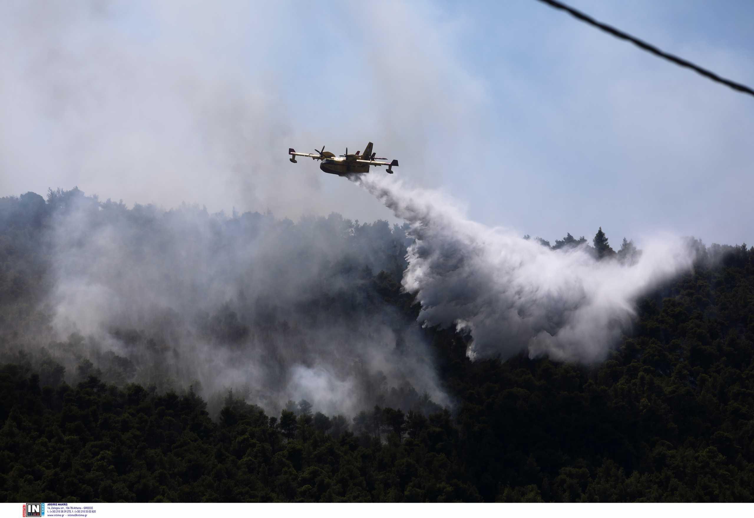 Φωτιά στη Μαγνησία: Επίγειες και εναέριες δυνάμεις πολεμούν εστίες στις Μικροθήβες