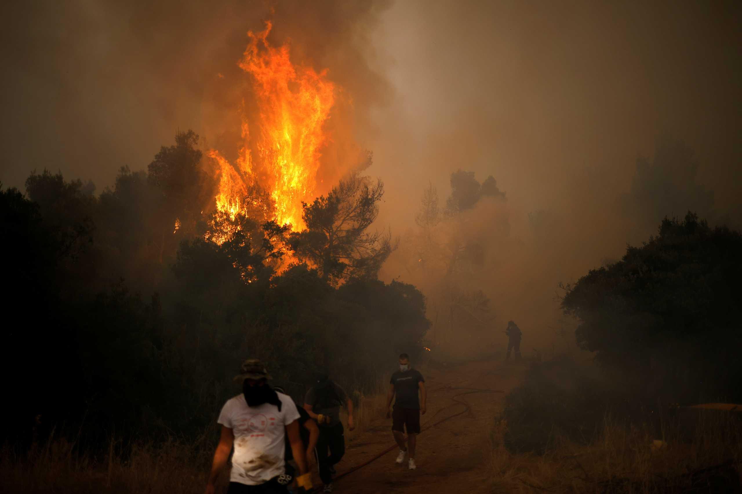 Χρυσοχοΐδης: Εισαγγελέας ερευνά όλες τις φετινές μεγάλες φωτιές